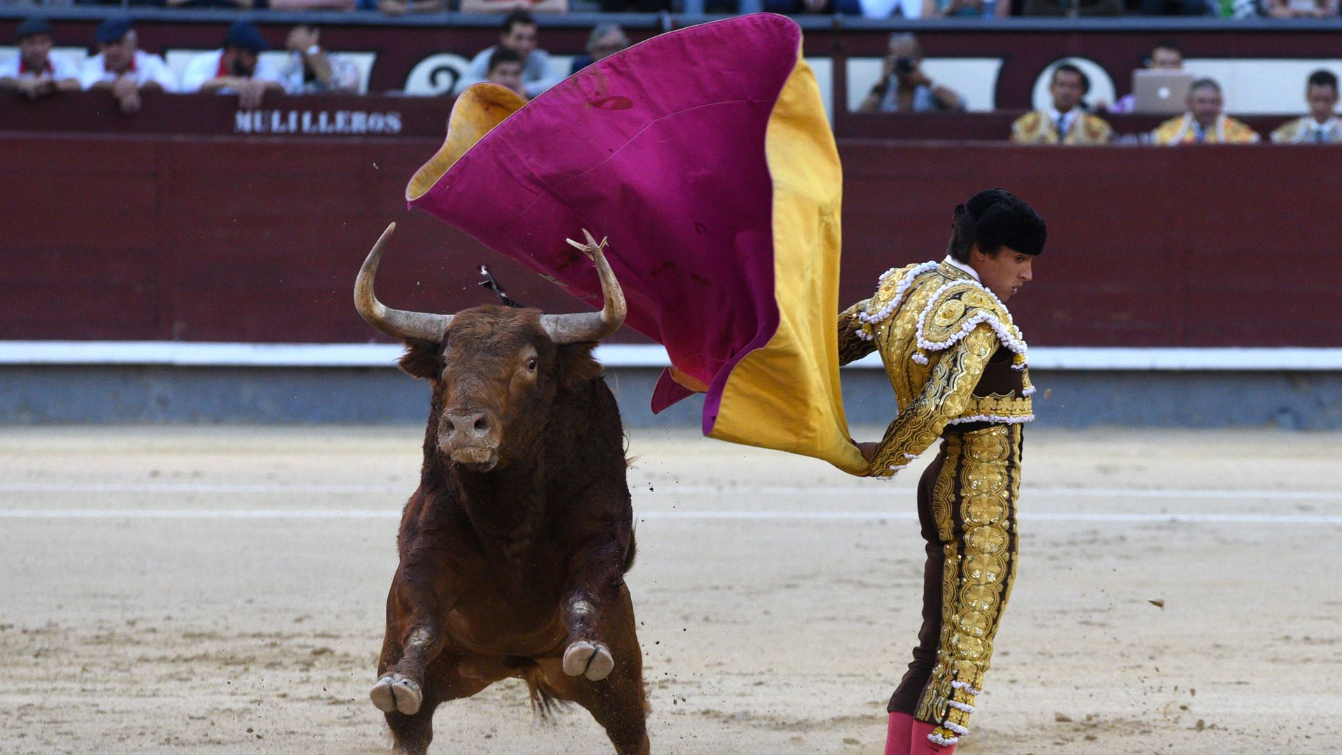 Bullfighting takes the electoral ring in Madrid, after Spain's fractured general election