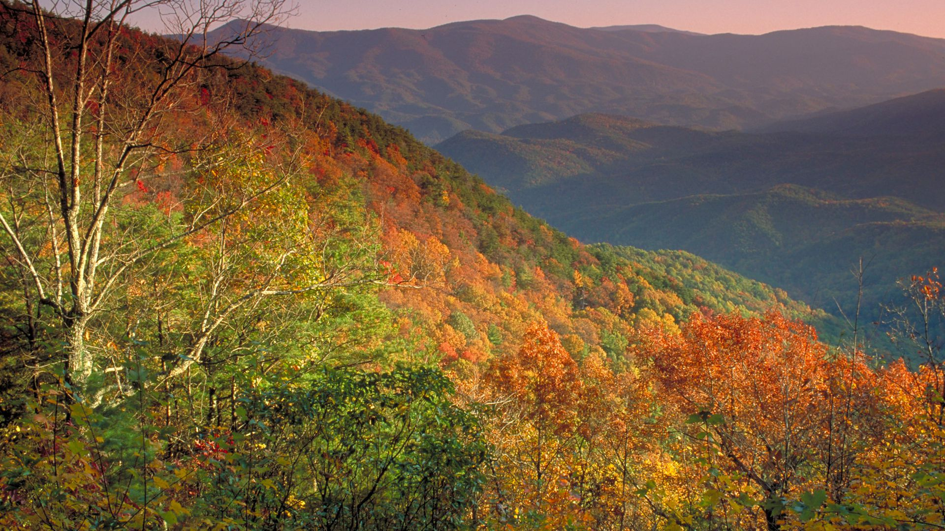 A view of Fort Mountain State Park in the autumn as green leaves change to red, amber, orange, and brown