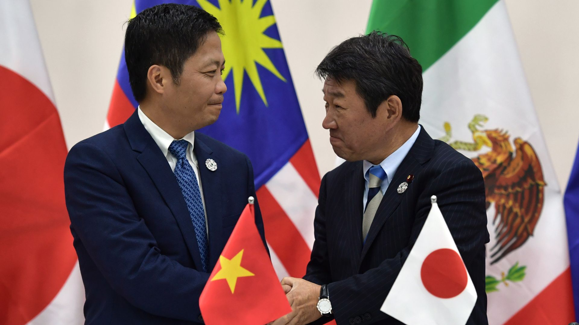 Ministers from Vietnam and Japan shaking hands