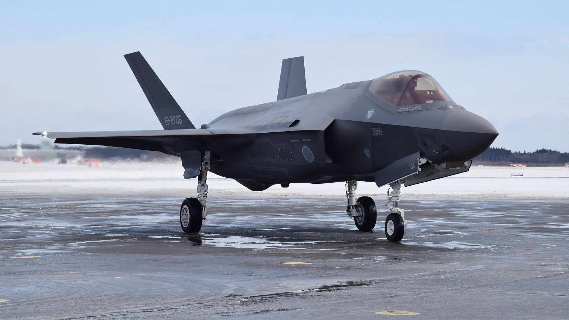 A F-35A stealth fighter jet of Japan's Self-Defence Forces, the same model as the one that crashed.