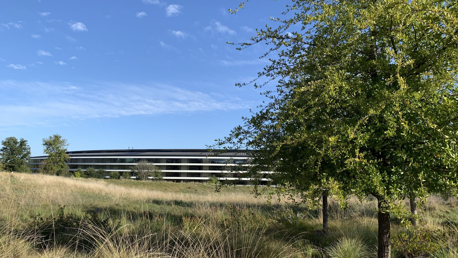 "A picture of Apple Park, Apple's new ""spaceship"" campus in Cupertino"