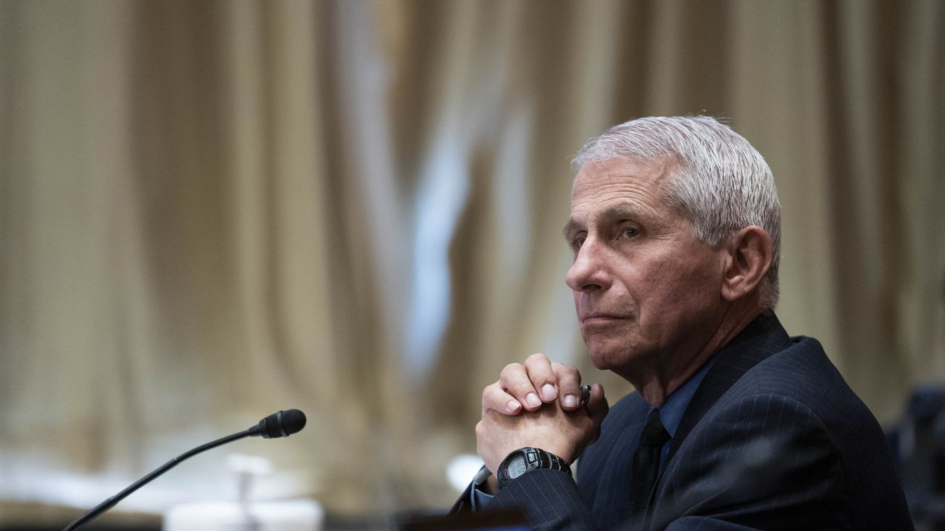 Monster risk: Fauci says COVID cases 10x too high