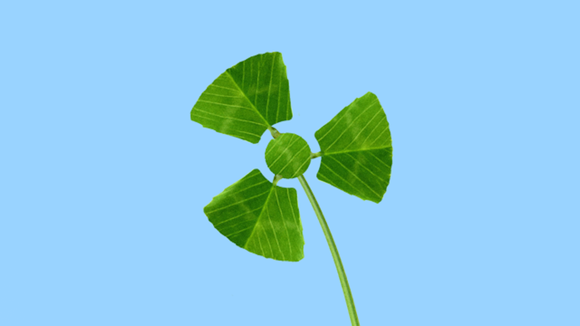 In this illustration, a three leaf clover is shaped like a nuclear power symbol.
