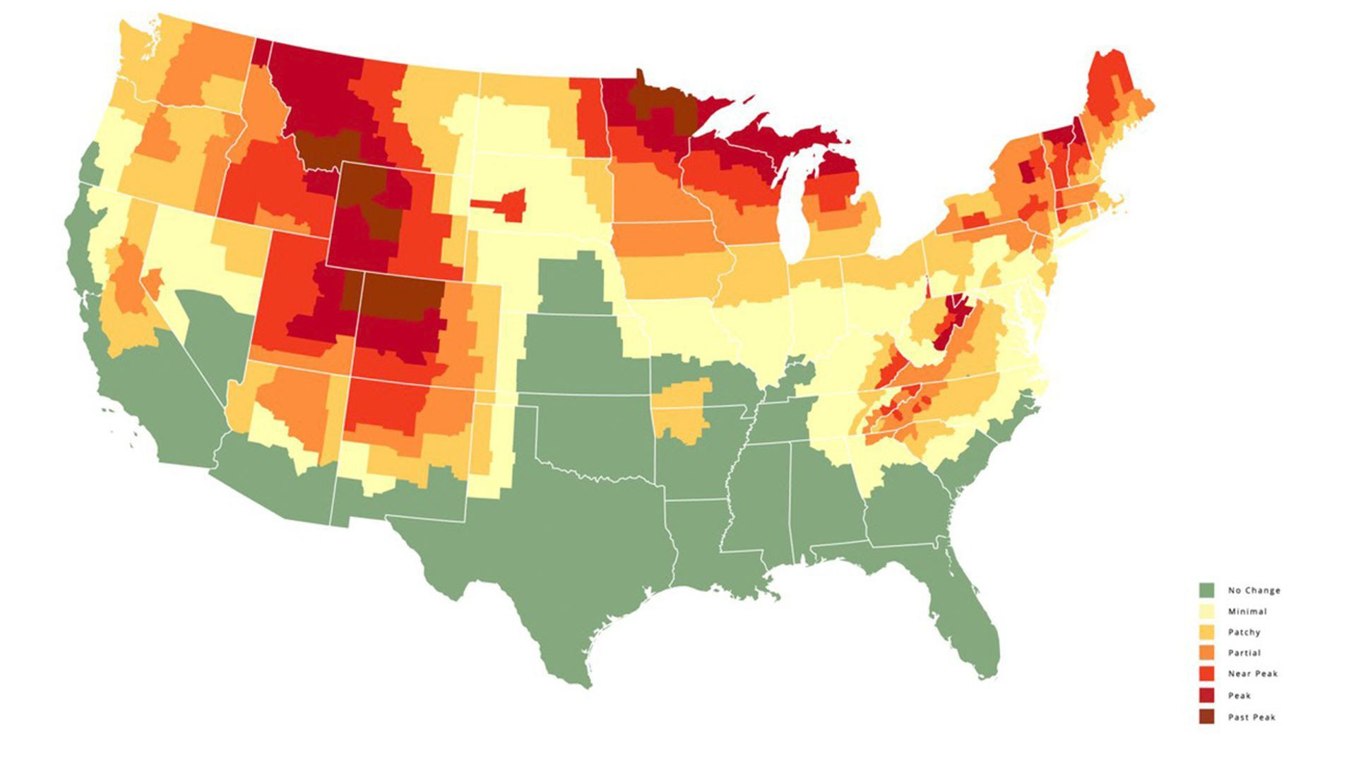 A map showing the fall color forecast across the U.S.