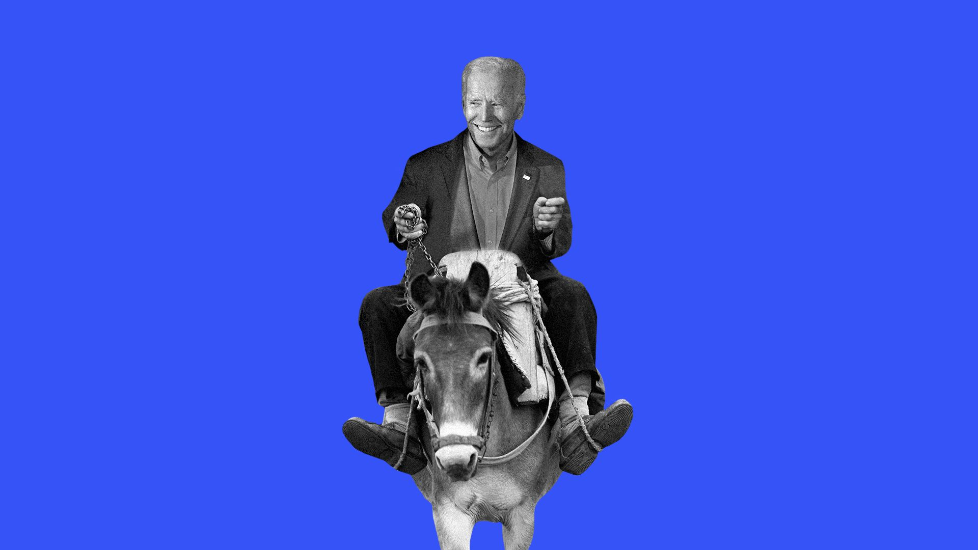 Illustration of Biden riding a donkey