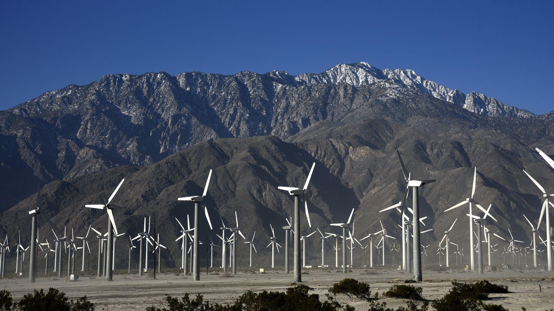 wind farm in Palm Springs, California