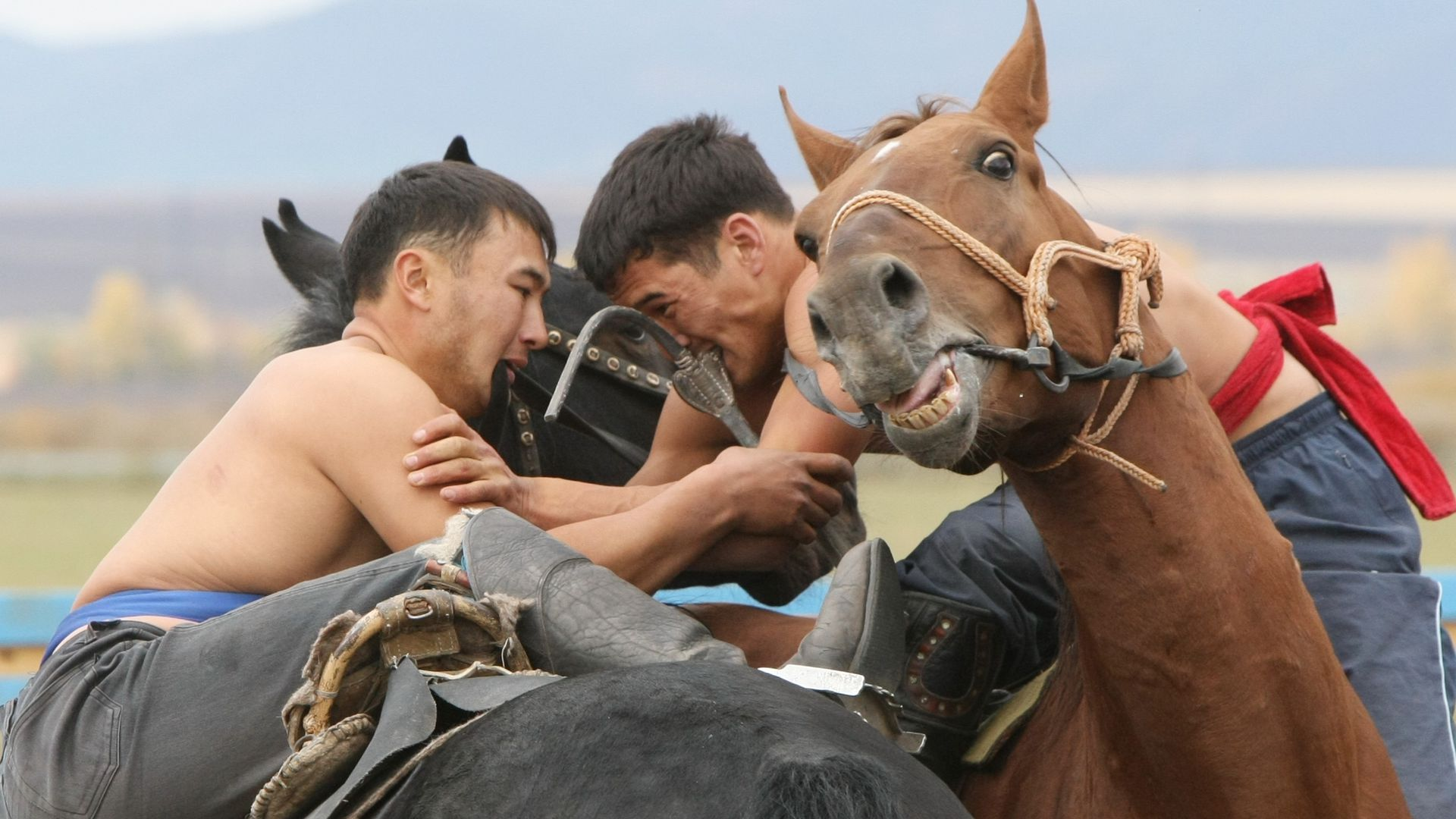 Central Asia cowboys are in their last throes