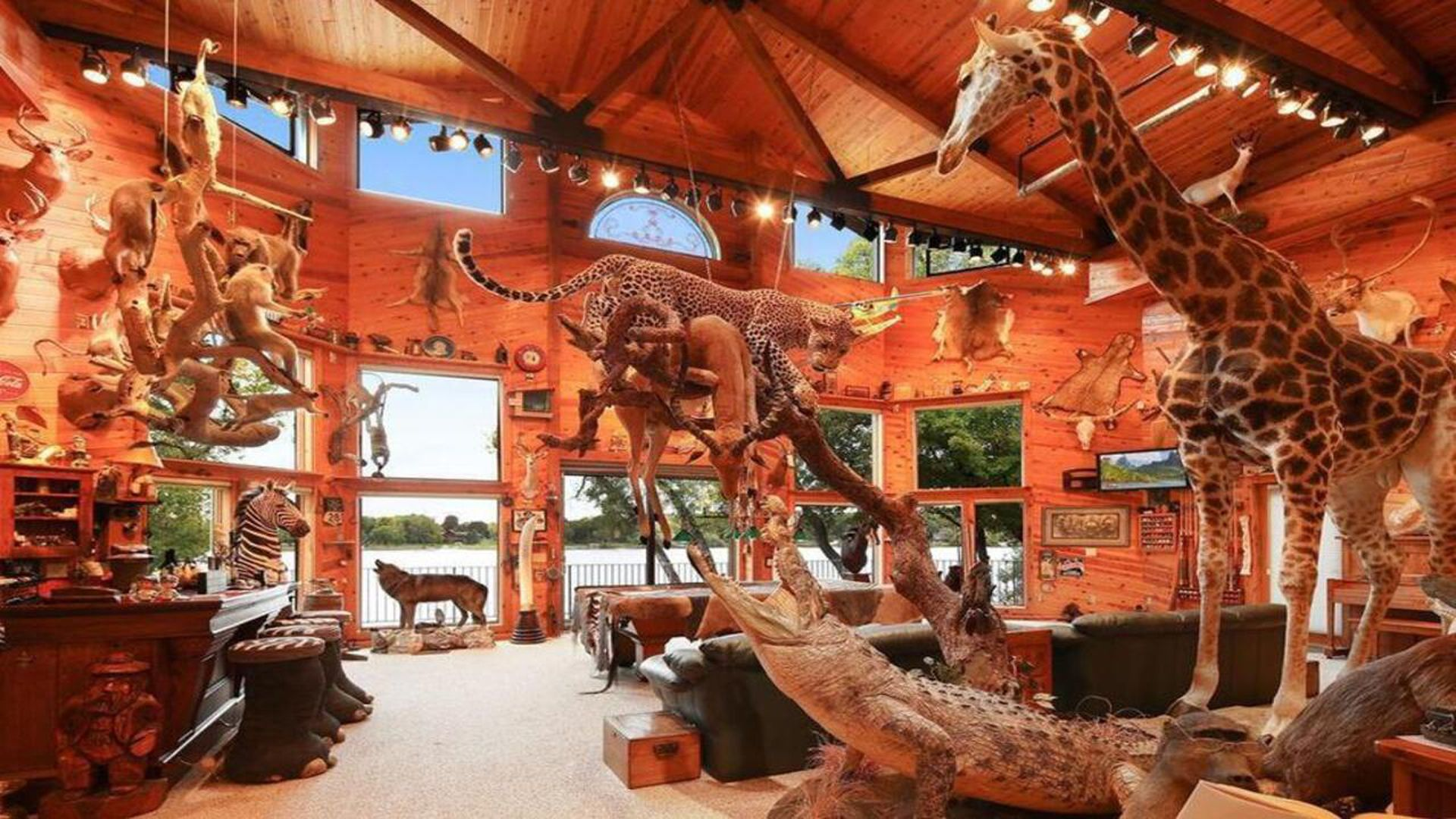 inside of zillow home filled with animals