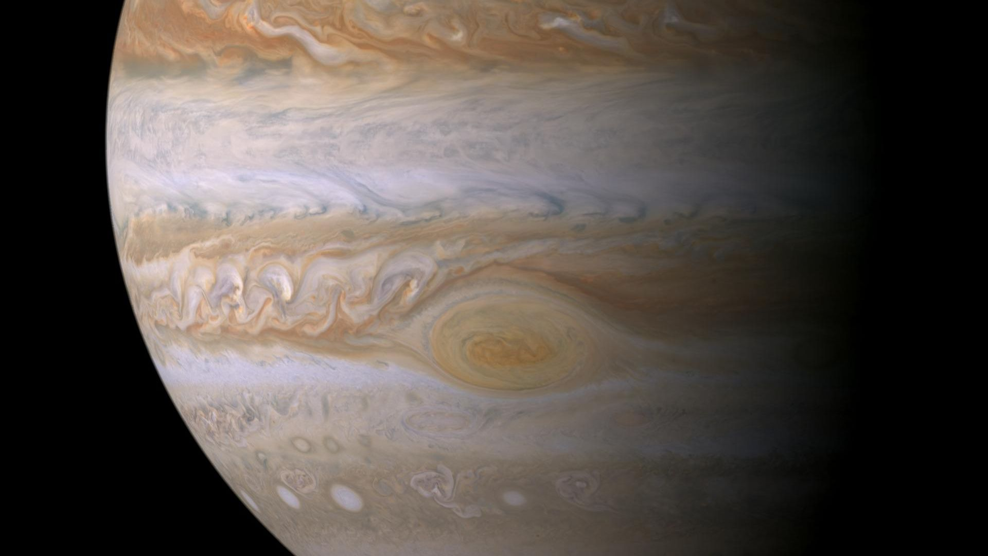 Jupiter as seen by the Cassini spacecraft.
