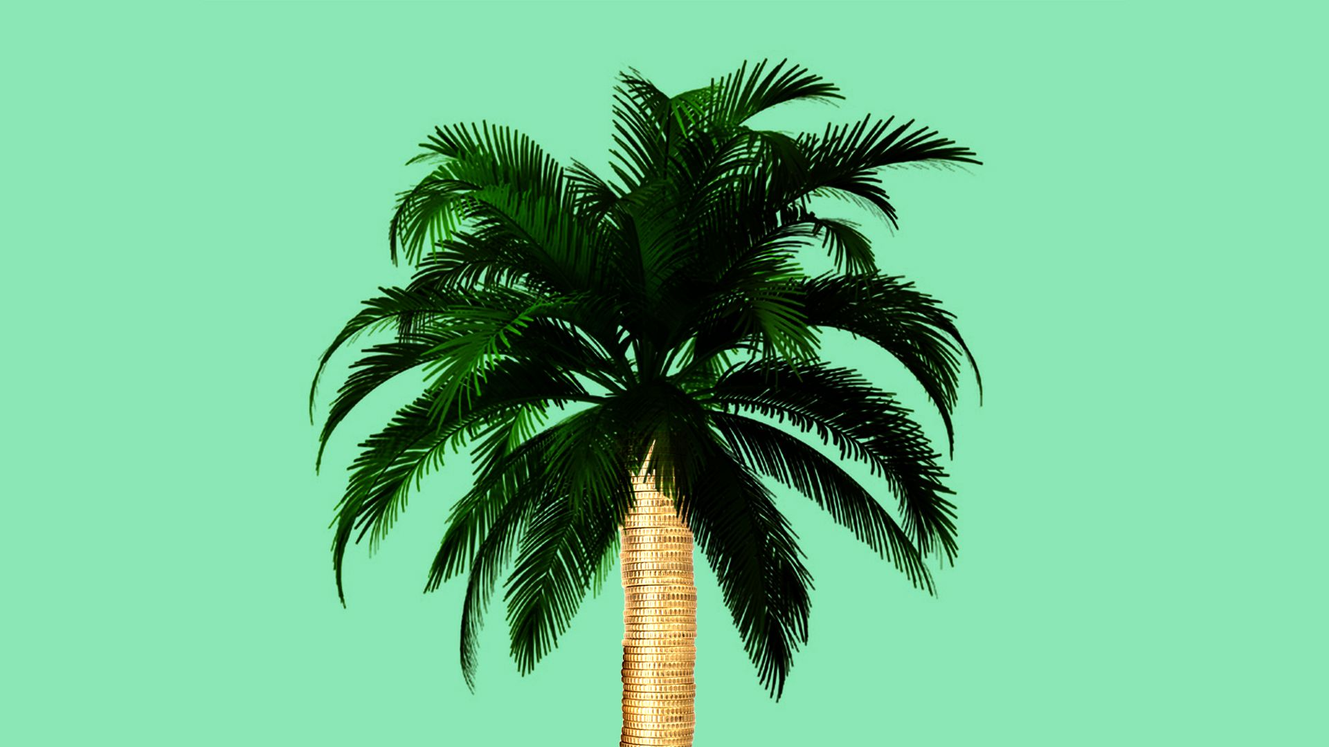 Illustration of a palm tree with a stack of gold coins as the trunk.