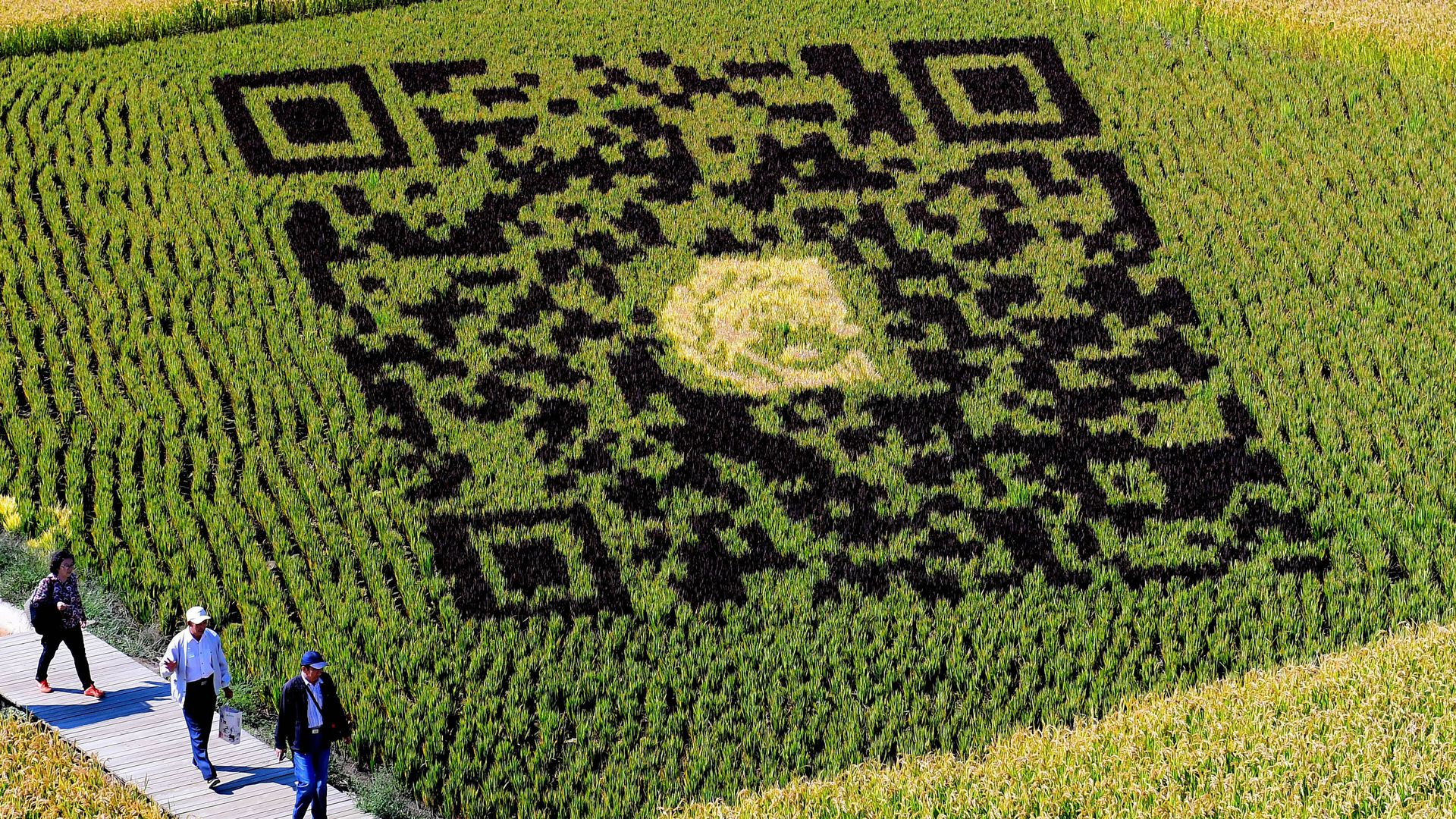 Chinese government is using QR codes to collect data on