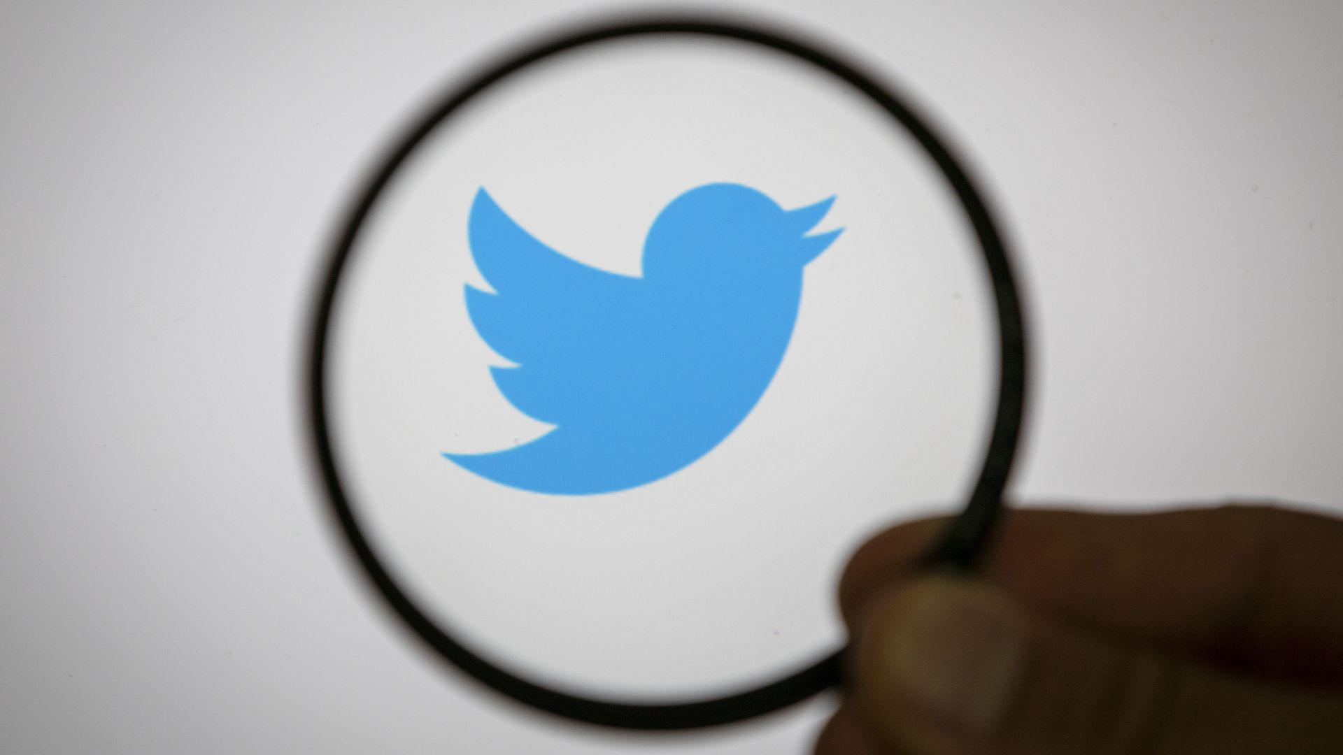 Twitter Loses 9 Million Monthly Active Users Axios