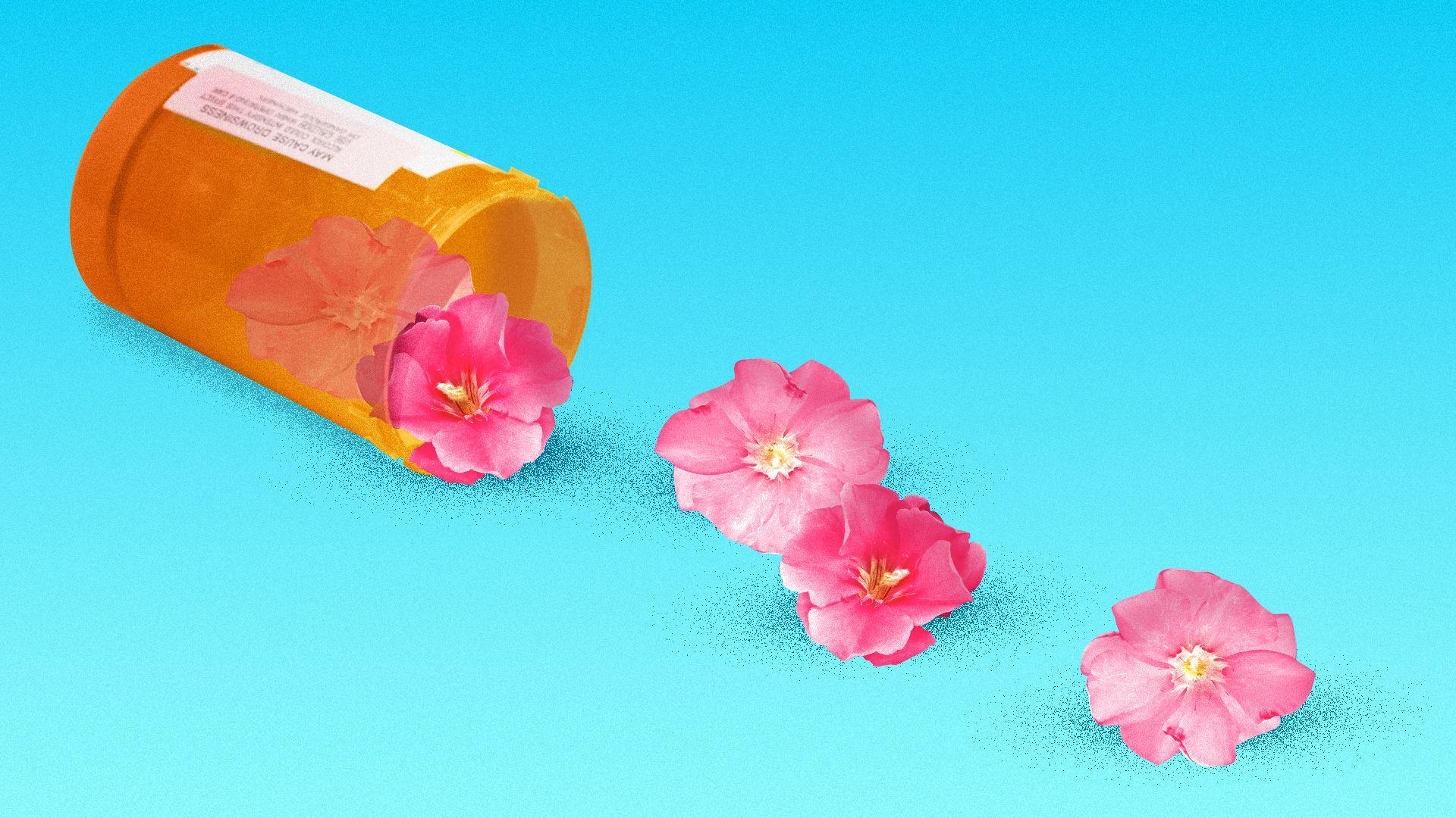 Illustration of a medicine bottle tipped on its side with oleander flowers spilling out.