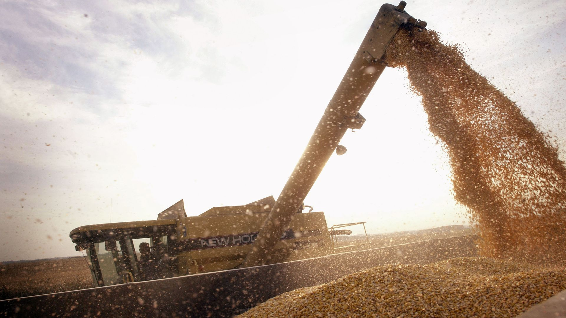 John Shedd, 85, loads a container with Bt-corn harvested from his son's farm October 9, 2003 near Rockton, Illinois.
