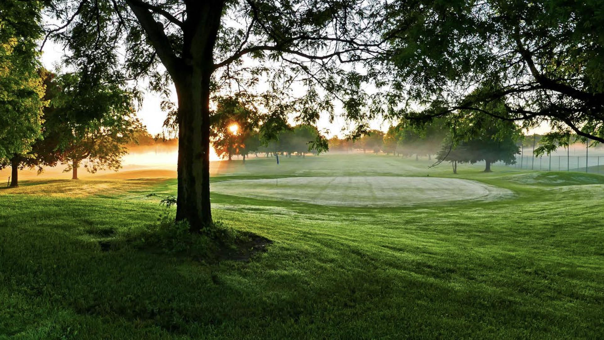 The green at Hiawatha Golf Course in South Minneapolis.