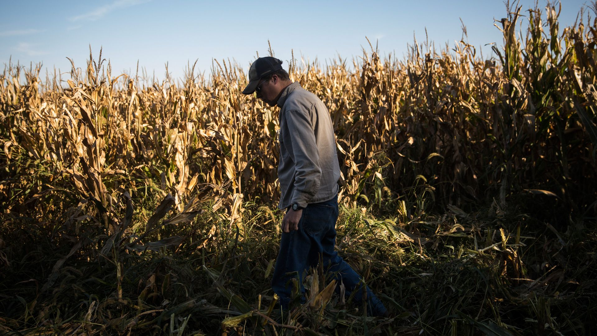 "Nebraska's corn famers are ""outraged"" at Trump over ethanol and trade disputes"
