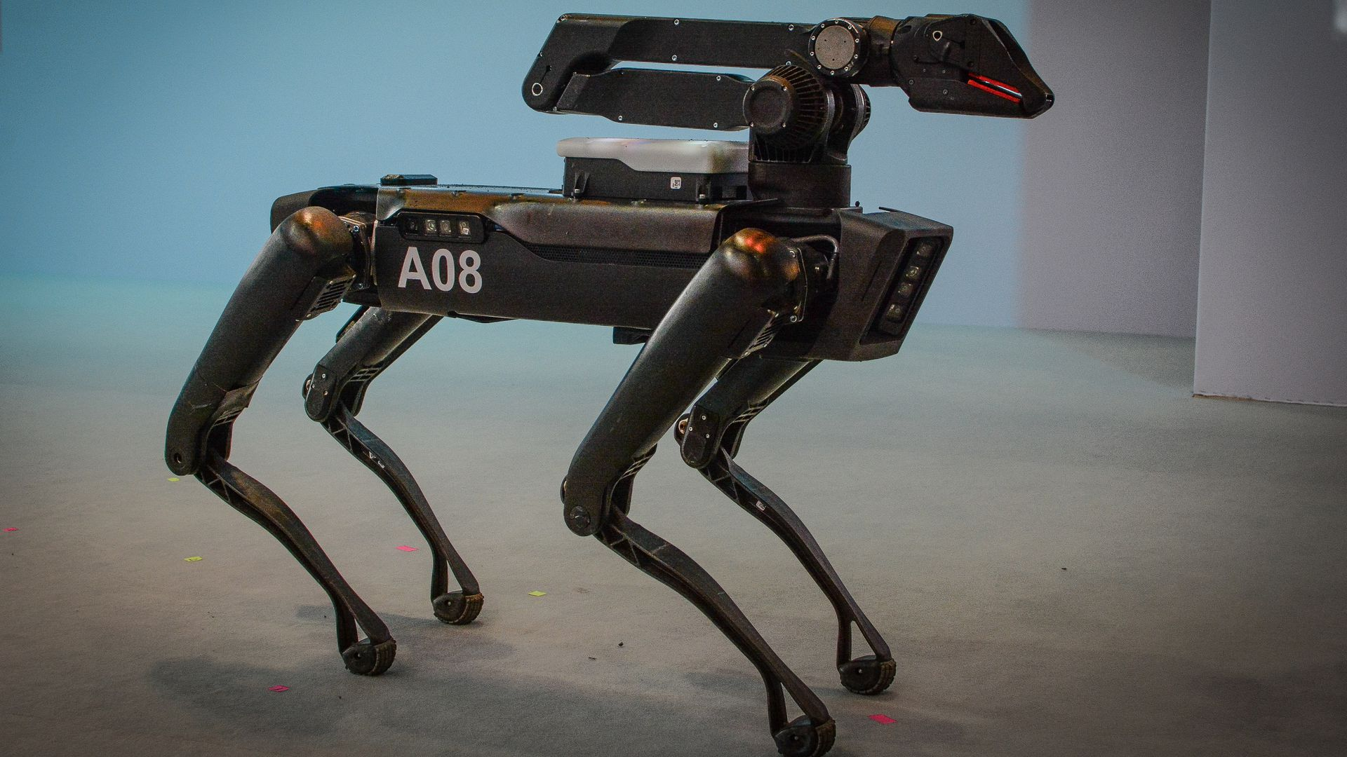 Photo of a four-legged robot.