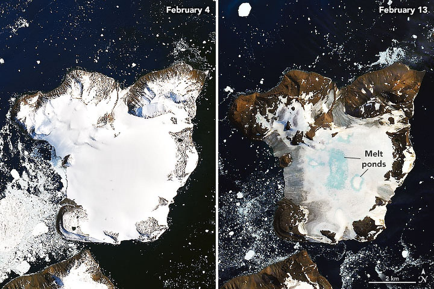 Heat wave melts 20% of snow cover from Antarctic island in days - Axios