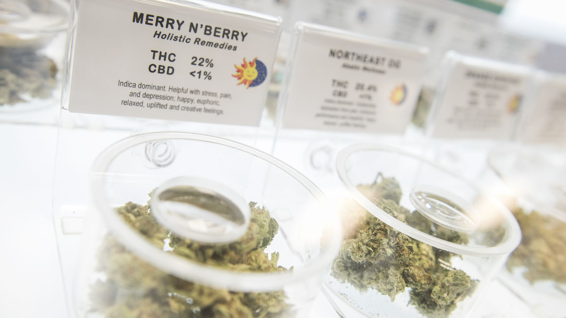 """In this image, a line of clear containers containing marijuana are lined up. The first one is labeled """"Merry Berry."""""""