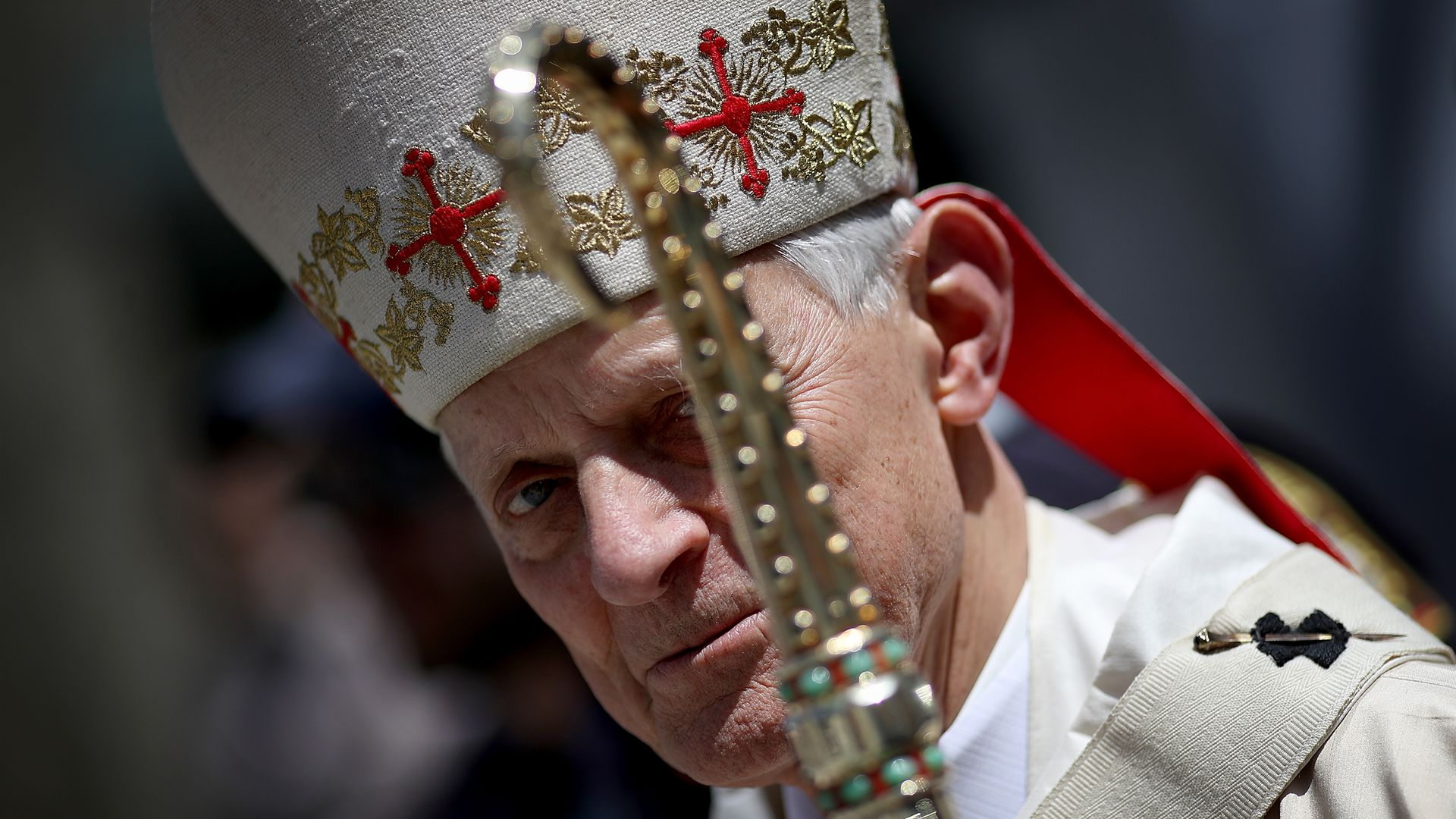 Cardinal Donald Wuerl, the Archbishop of Washington. Photo: Win McNamee/Getty Images
