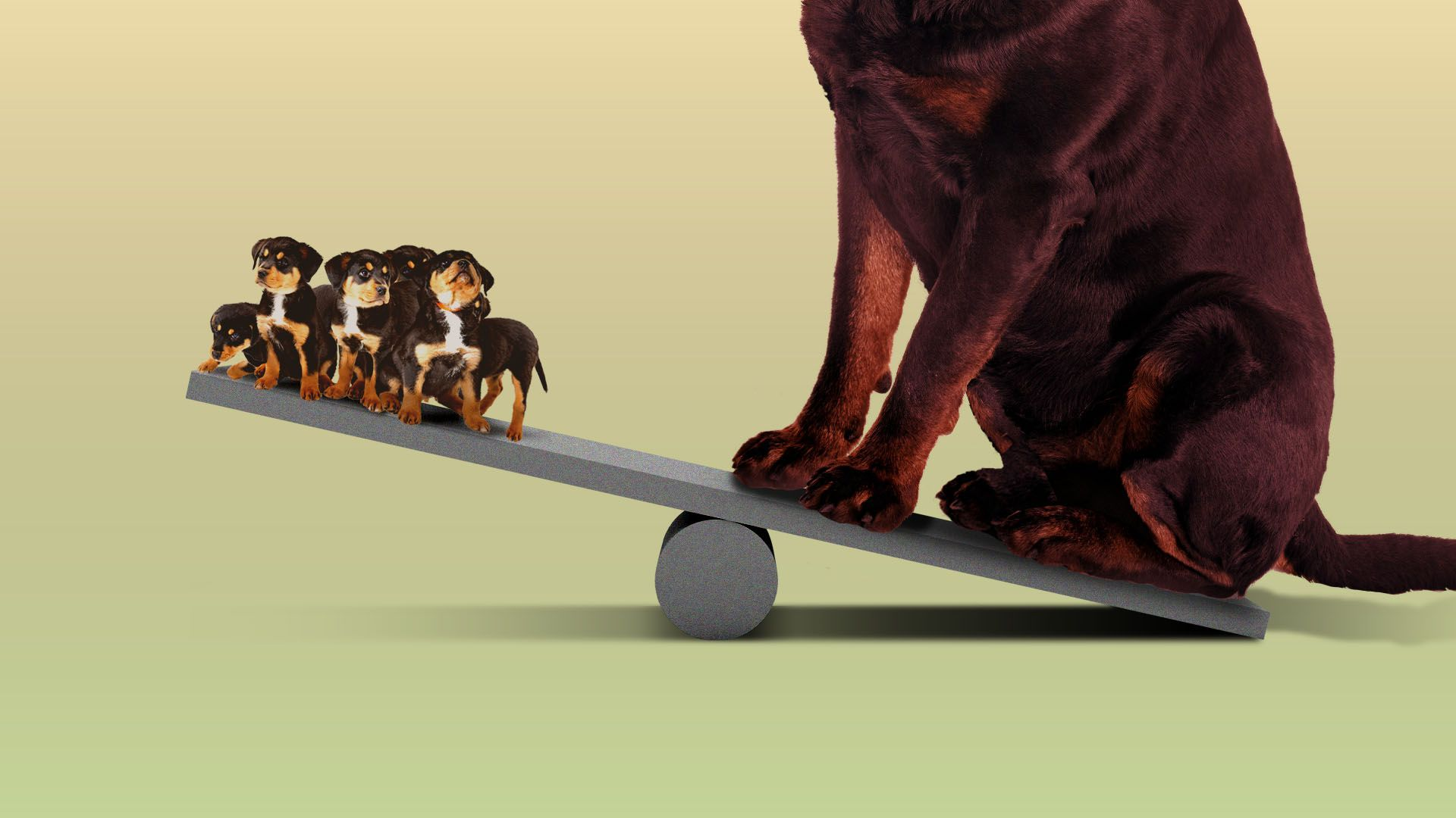 Illustration of a seesaw with a giant dog on one side and a bunch of puppies on the other side