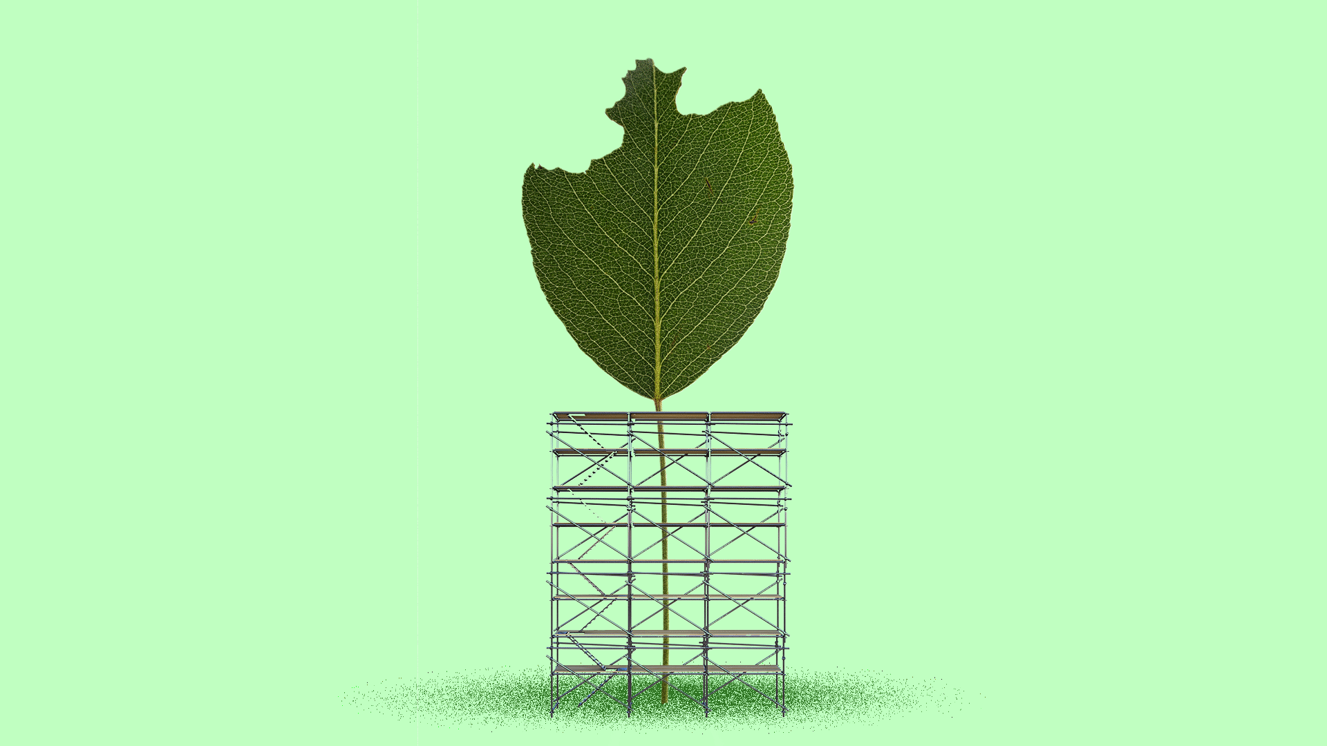 Illustration of a damaged leaf with scaffolding around it