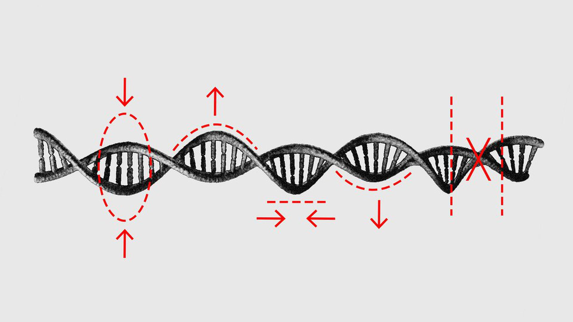 "Illustration of double helix DNA and red marks ""editing"" it."