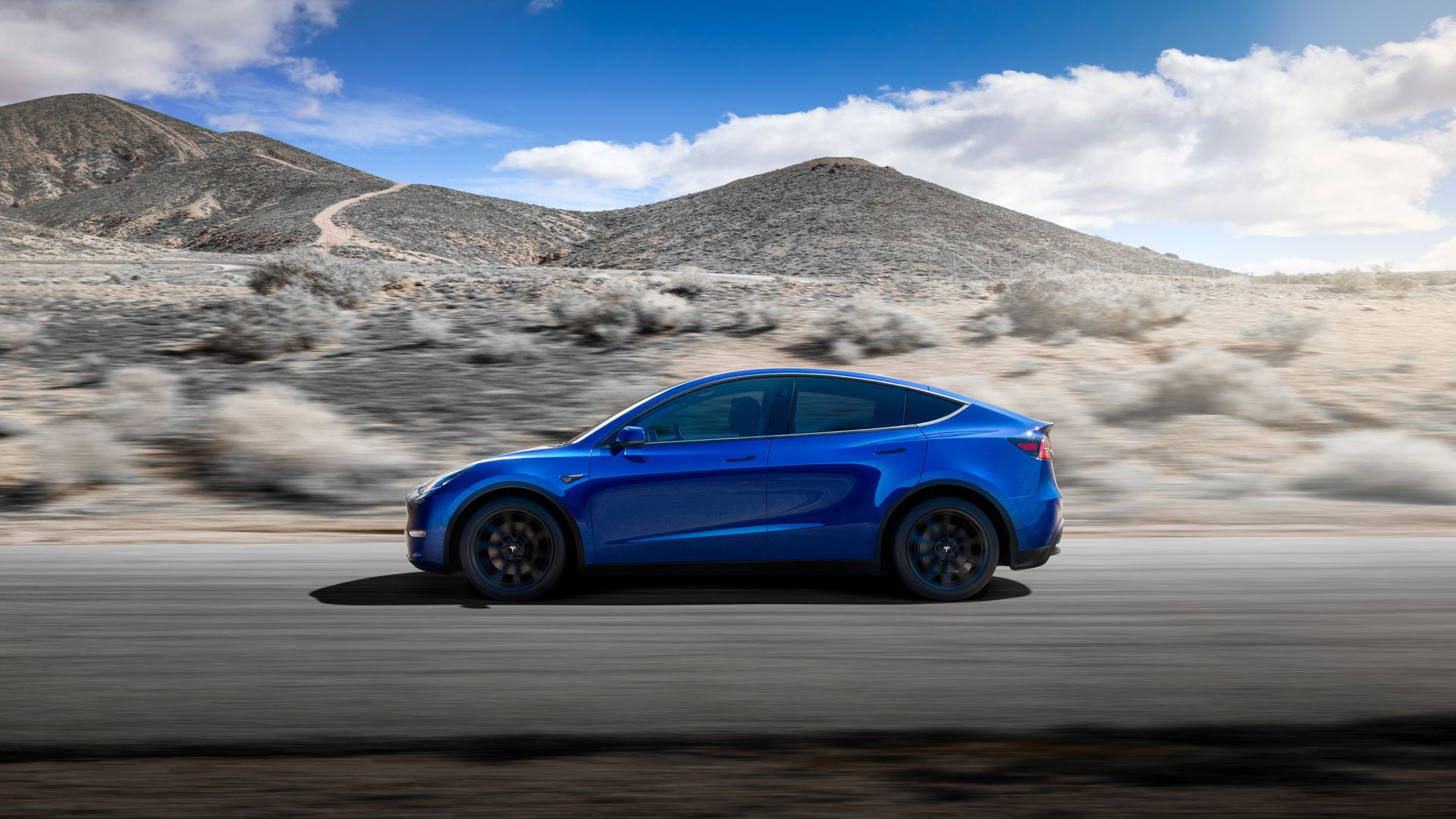 Photo of the newly unveiled Tesla Model Y