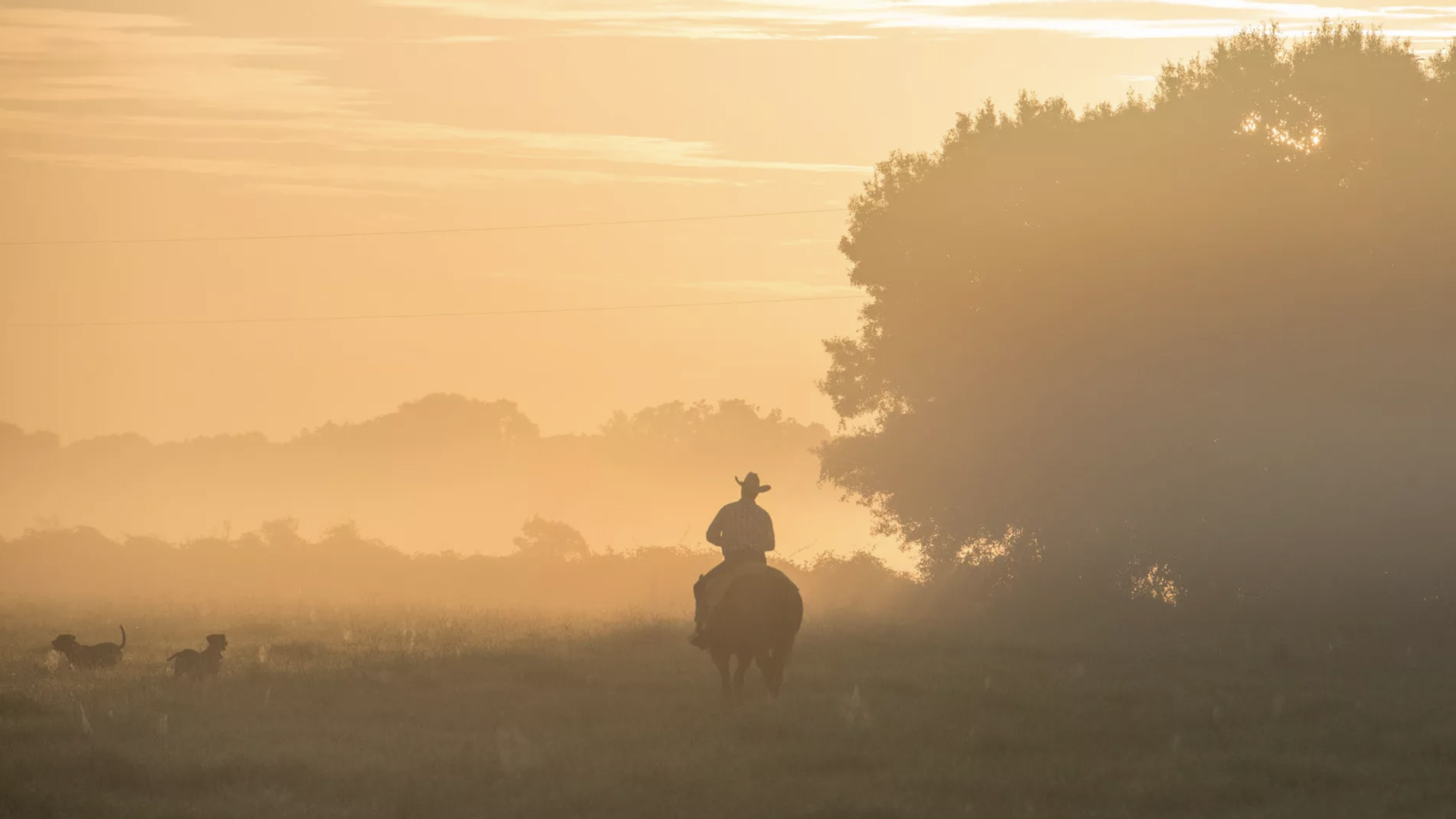 Photo of a man in a cowboy hat riding a horse in the sunrise.
