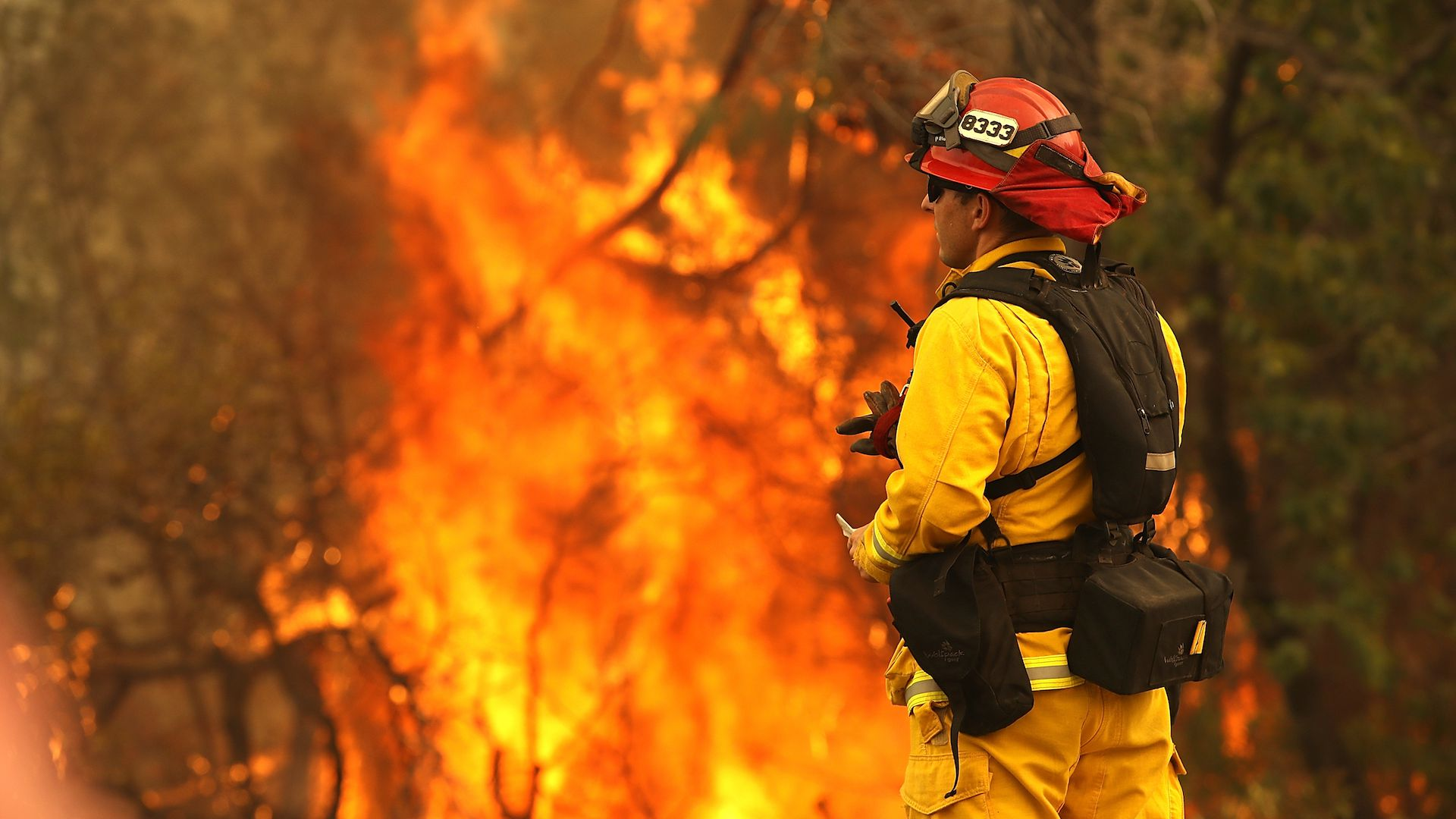 Firefighter battling the flames from the deadly Carr Fire in northern California.