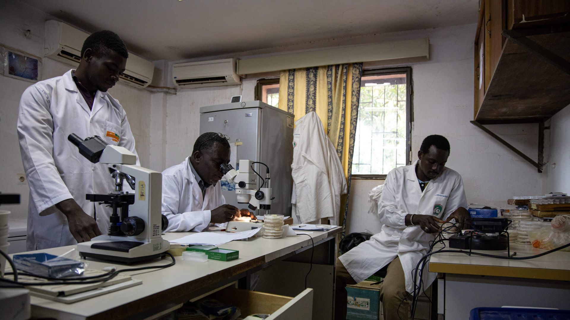 With key funding in the balance, a study argues malaria eradication may be possible by 2050