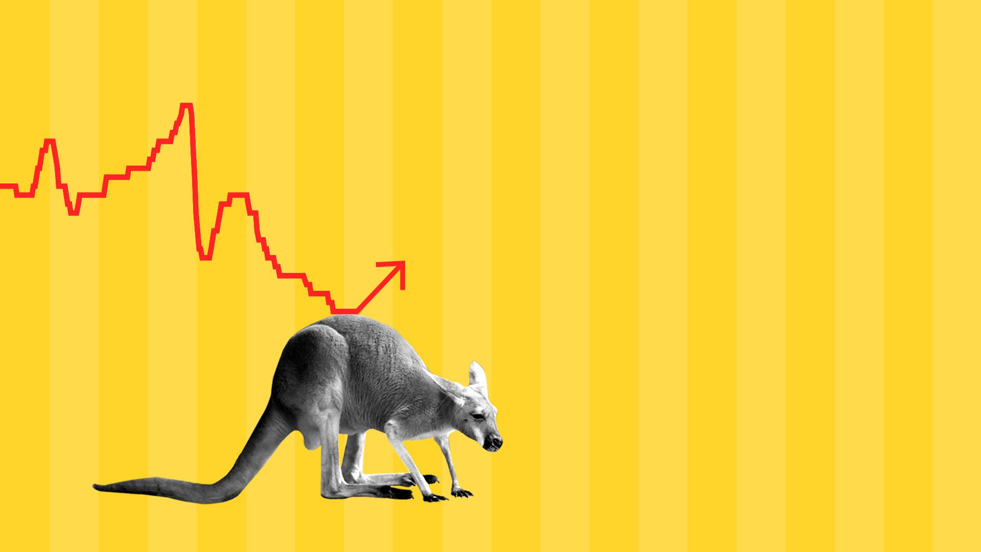 Kangaroo pushing up a stock chart.