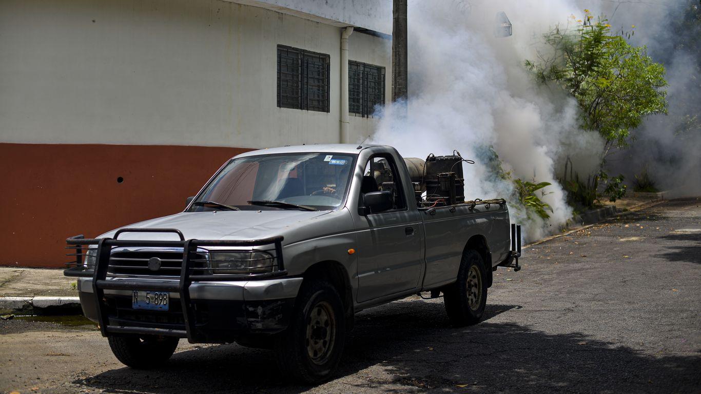 WHO says El Salvador has eliminated malaria