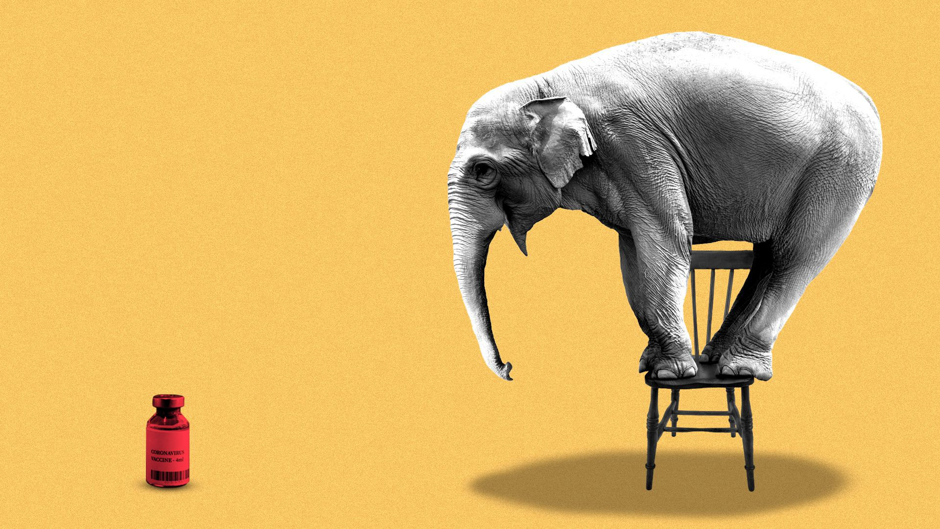 Illustration of an elephant standing on a chair because he is afraid of a vaccine vial.