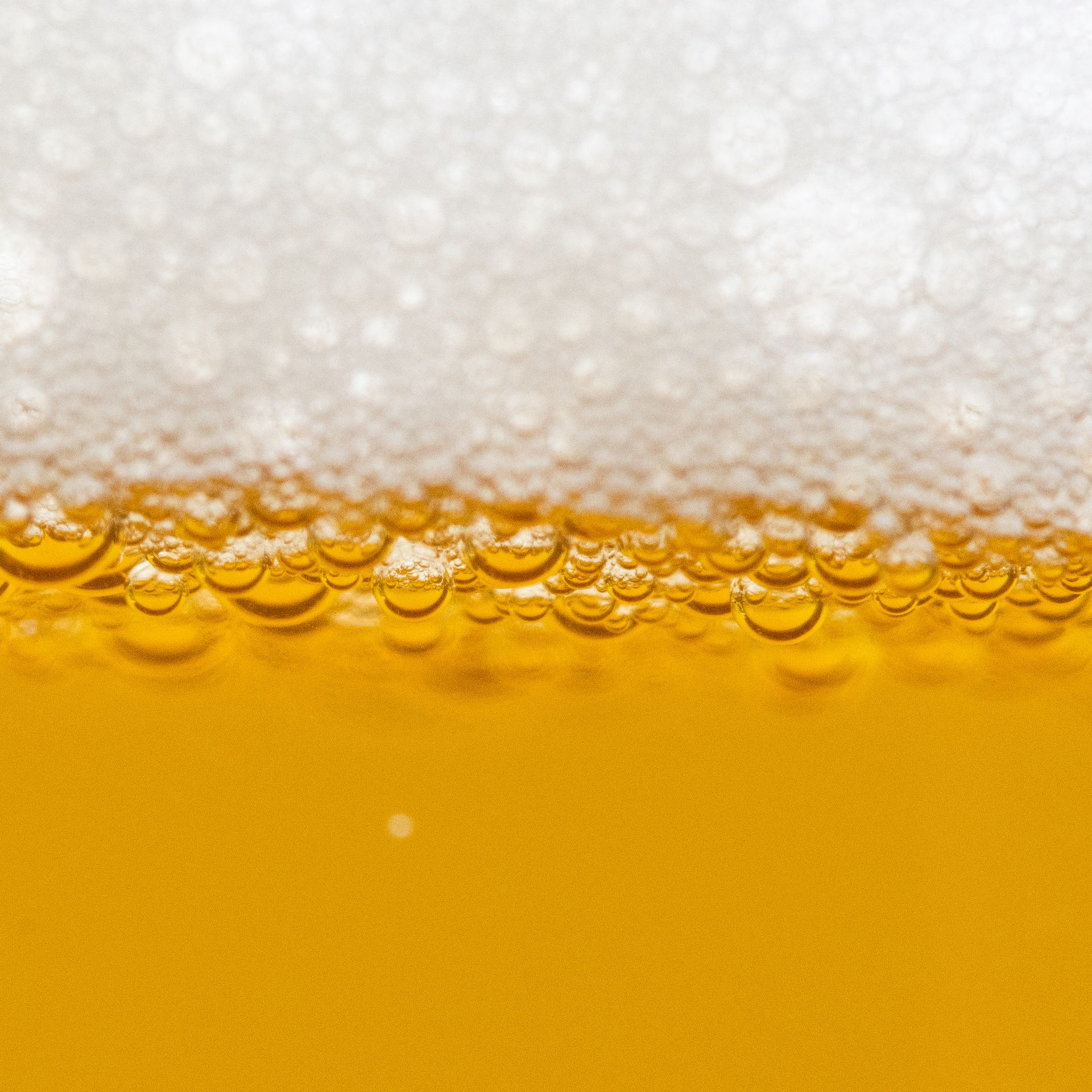A close up of beer and foam