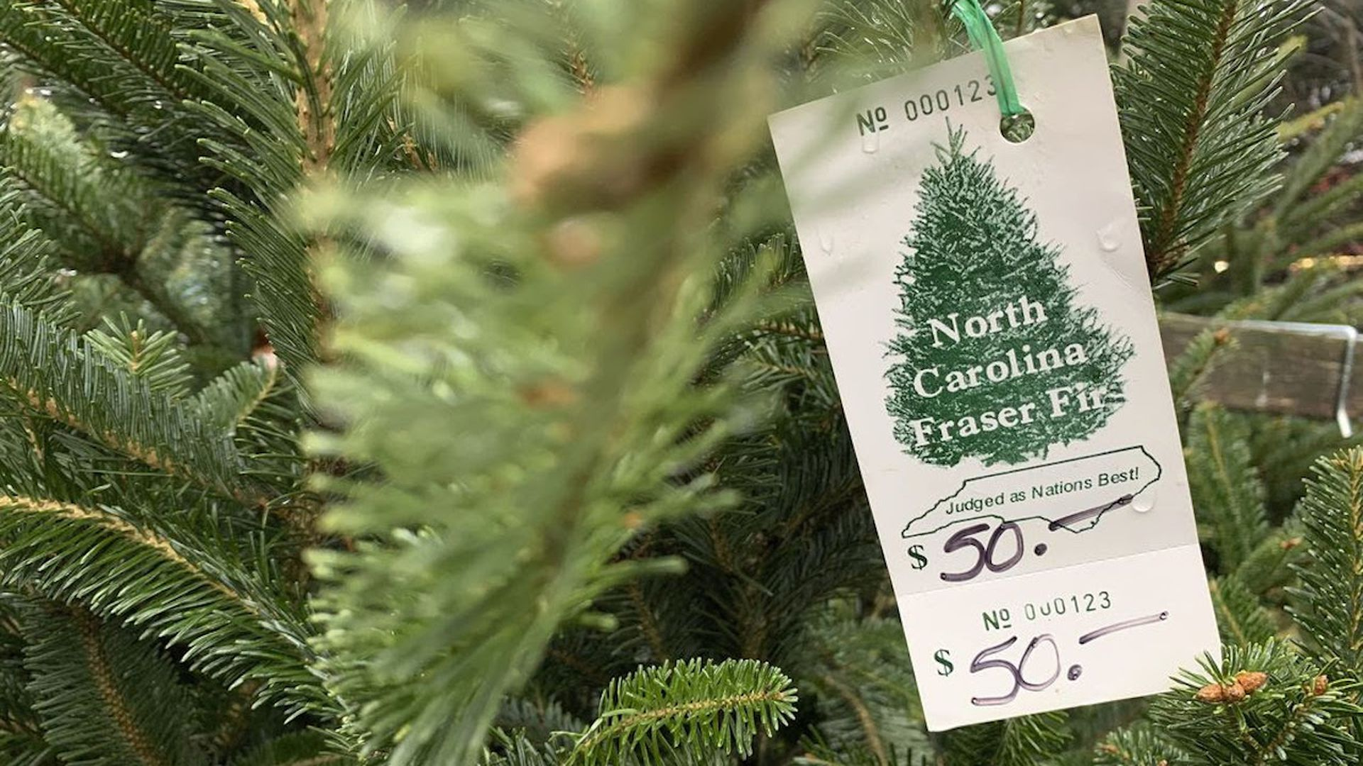 Christmas tree with a price tag on it