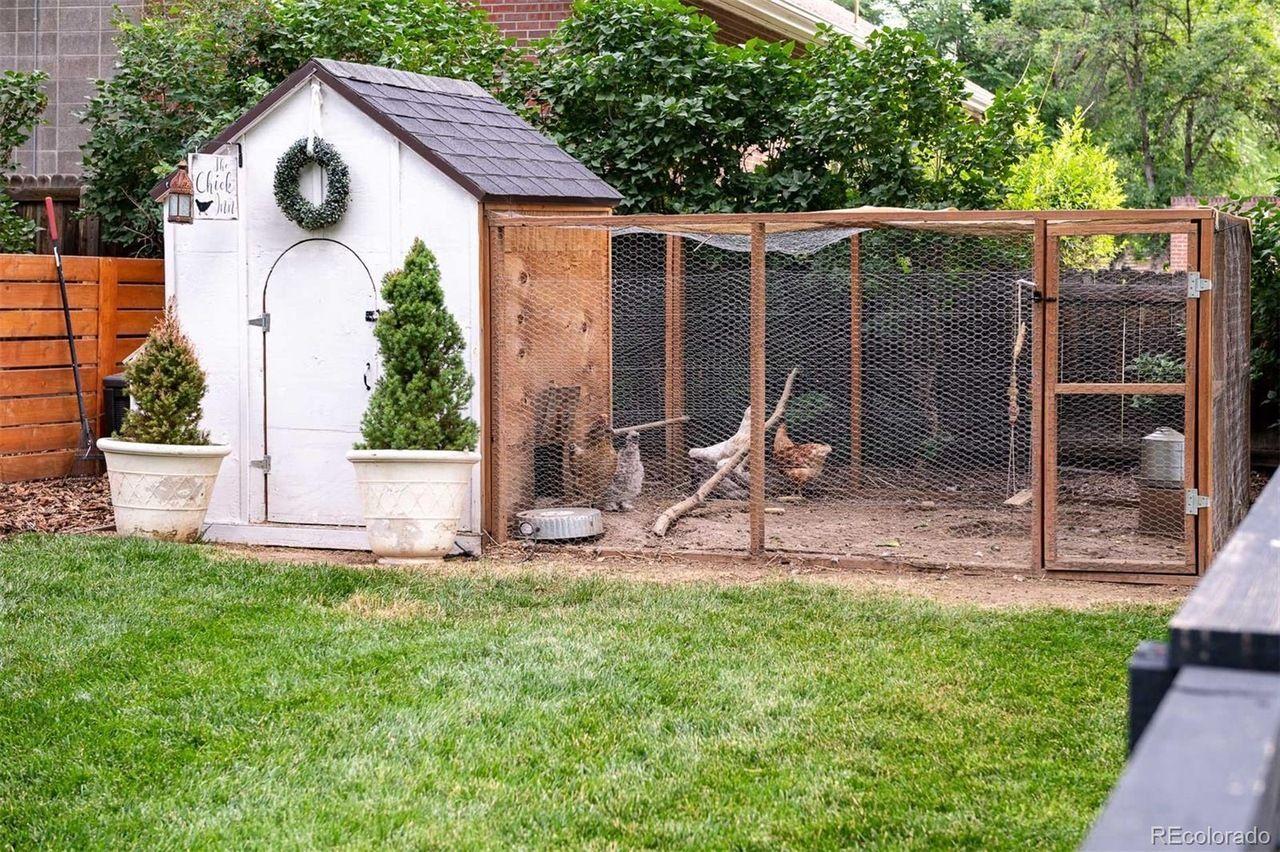1651 Dahlia St. chicken coop