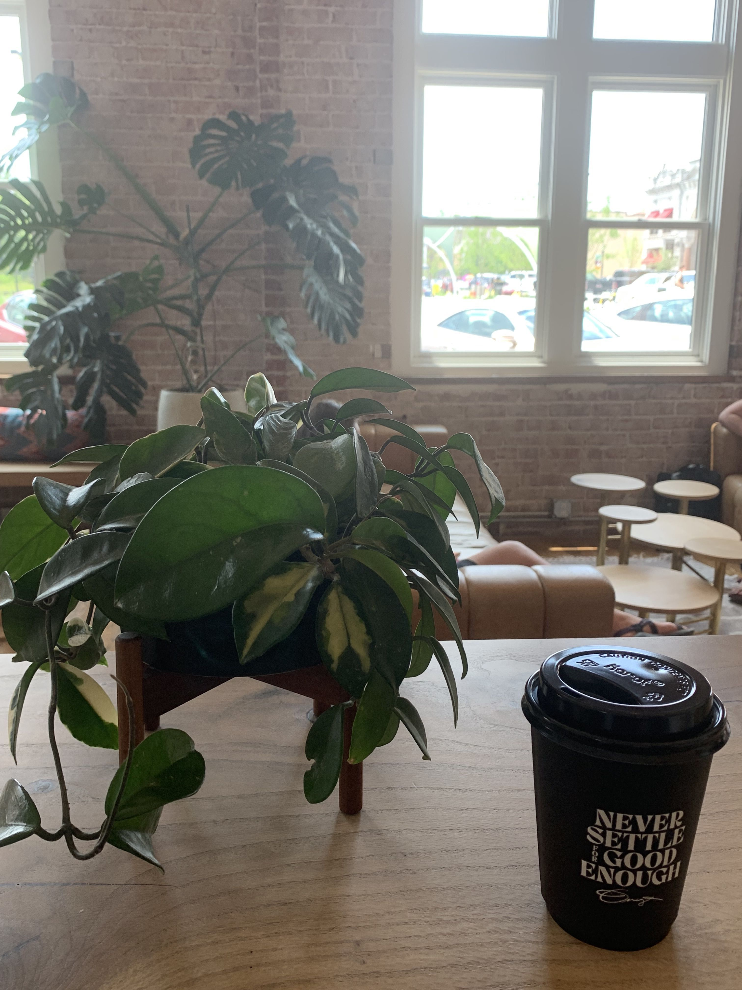 A cup of coffee sits on a wooden table next to a plant
