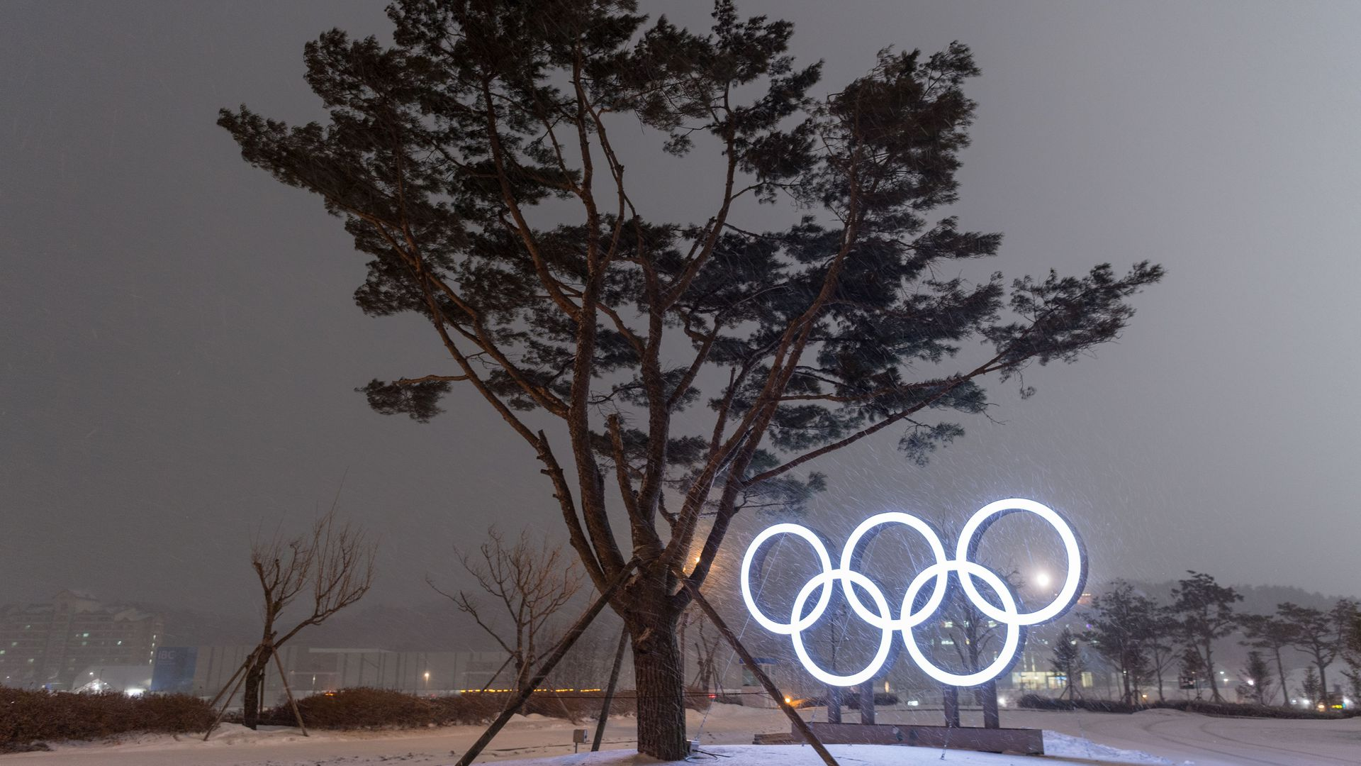 The Olympic rings as snow falls