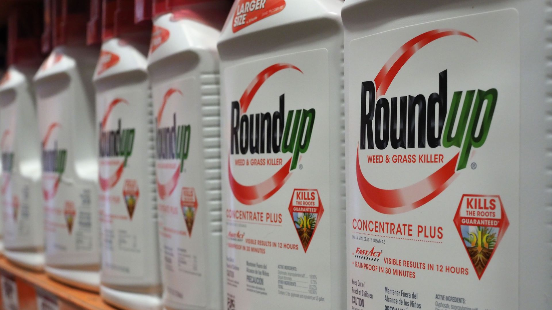 Roundup weed killer on a store shelf