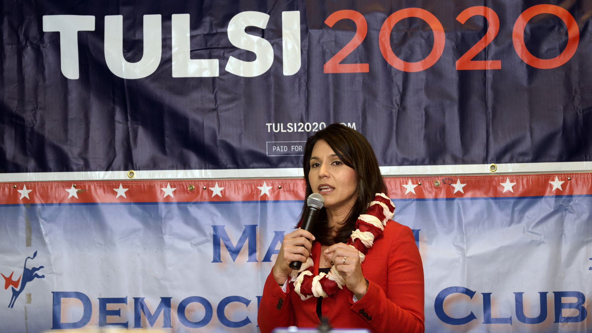 Tulsi Gabbard vows to drop charges against Assange, Snowden if elected in 2020