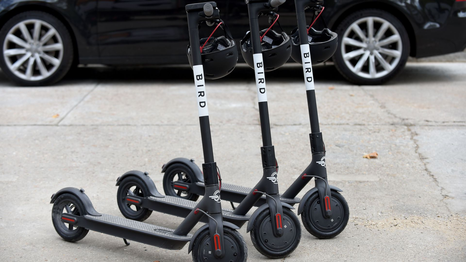 Photo of Bird scooters on sidewalk.