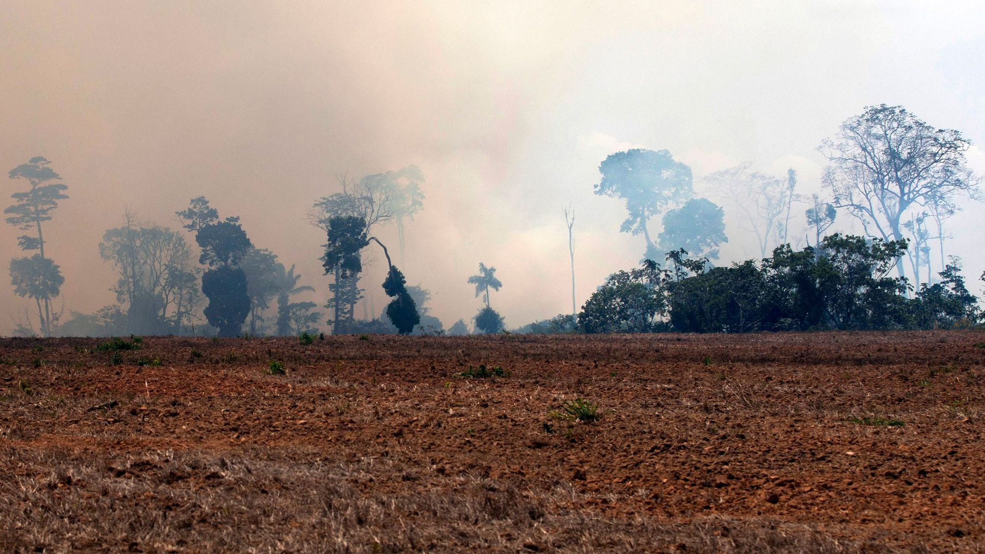 A smoke cloud is seen over a burnt area after a fire in the Amazon rainforest, in Novo Progresso, Para state, Brazil, on August 24, 2019.