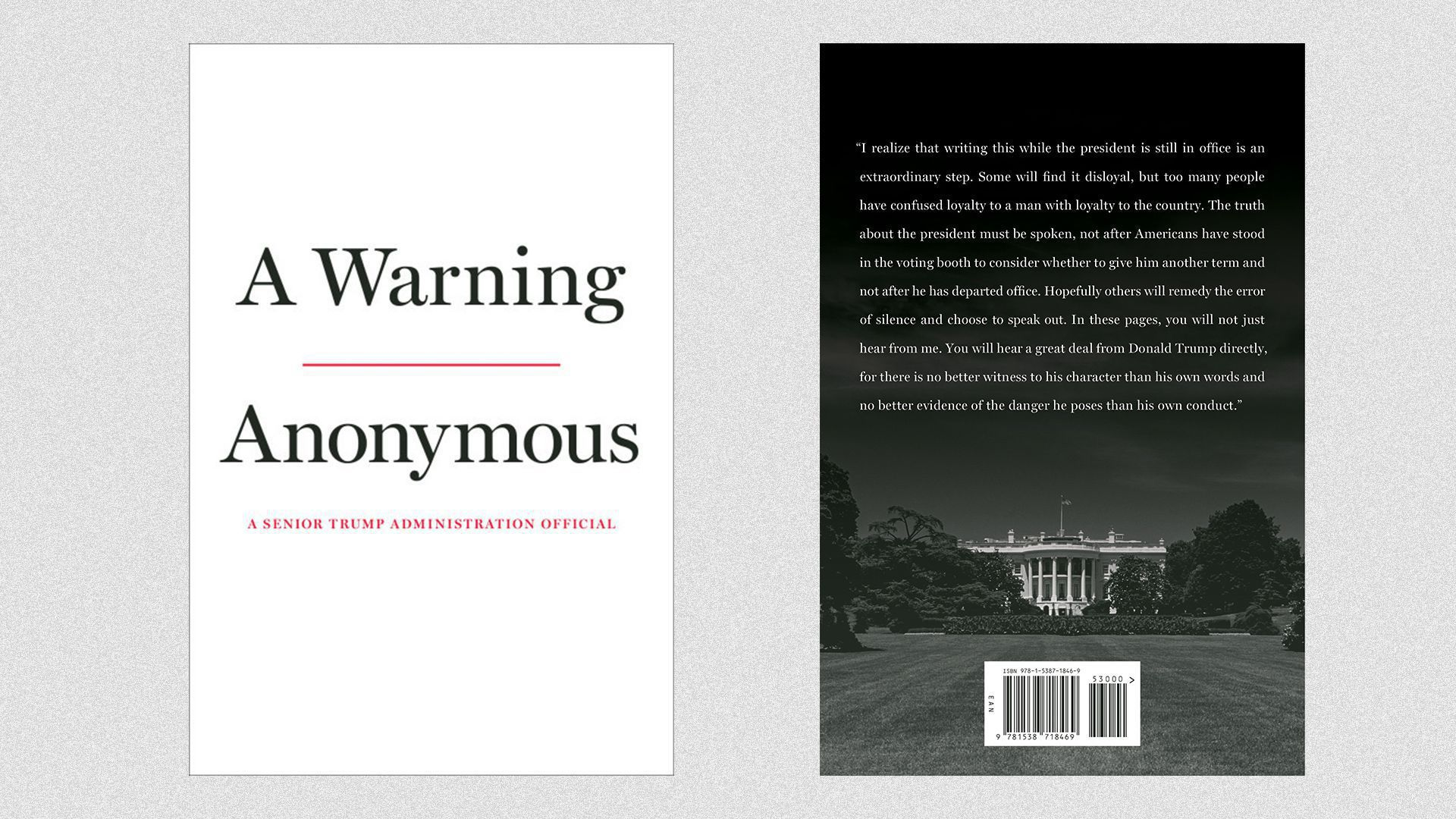 """Book cover for """"A Warning"""""""