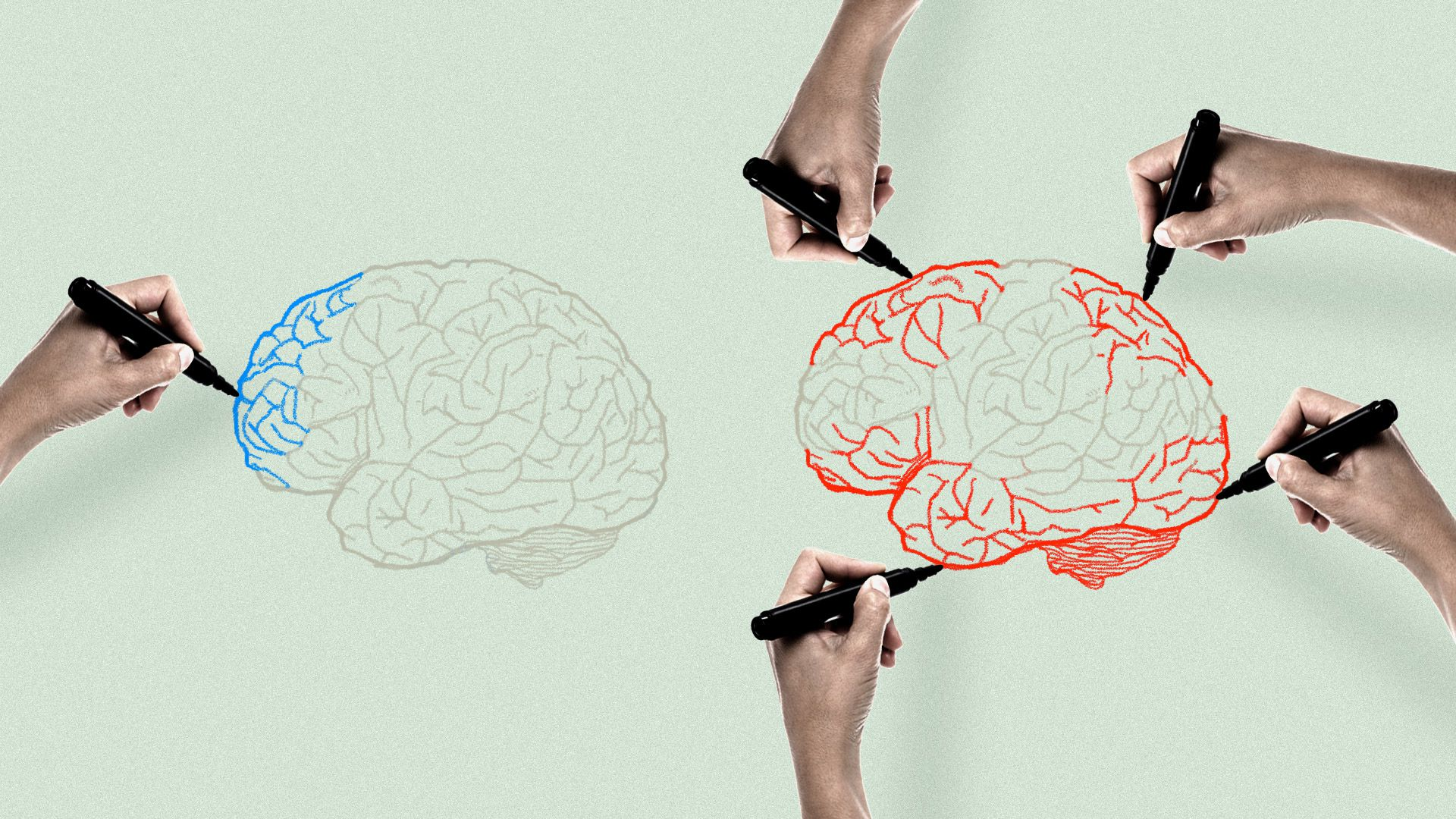 Illustration of hands drawing brains