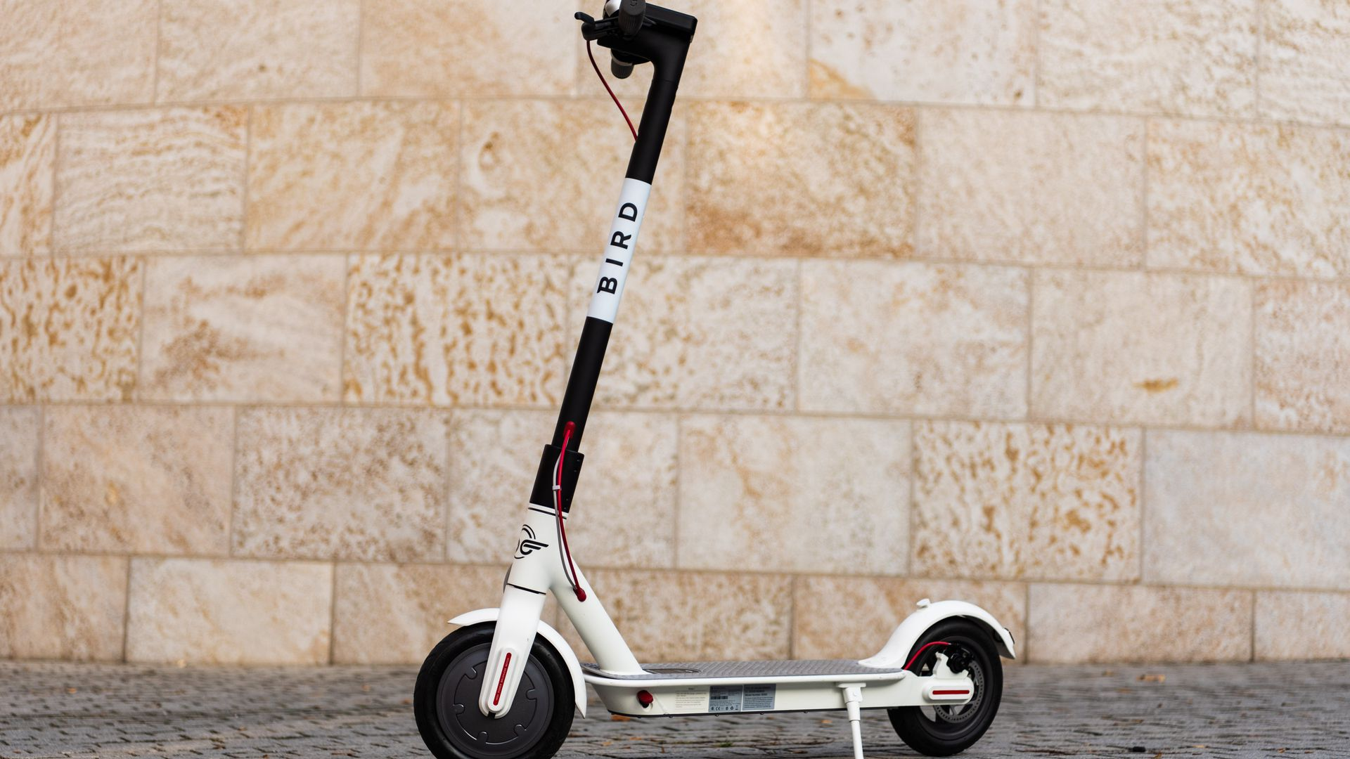 Photo of Bird electric scooter on street.