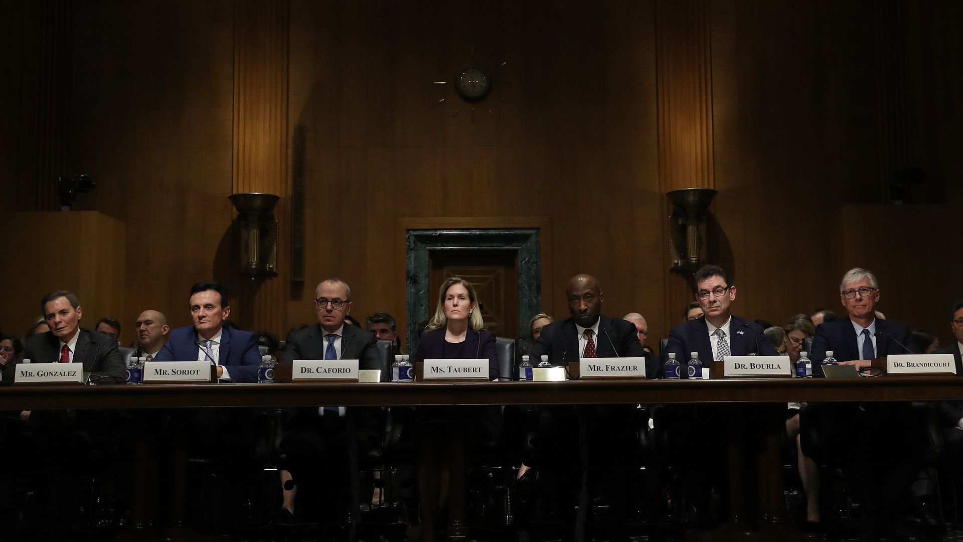 Health care ceos testifiying in congress