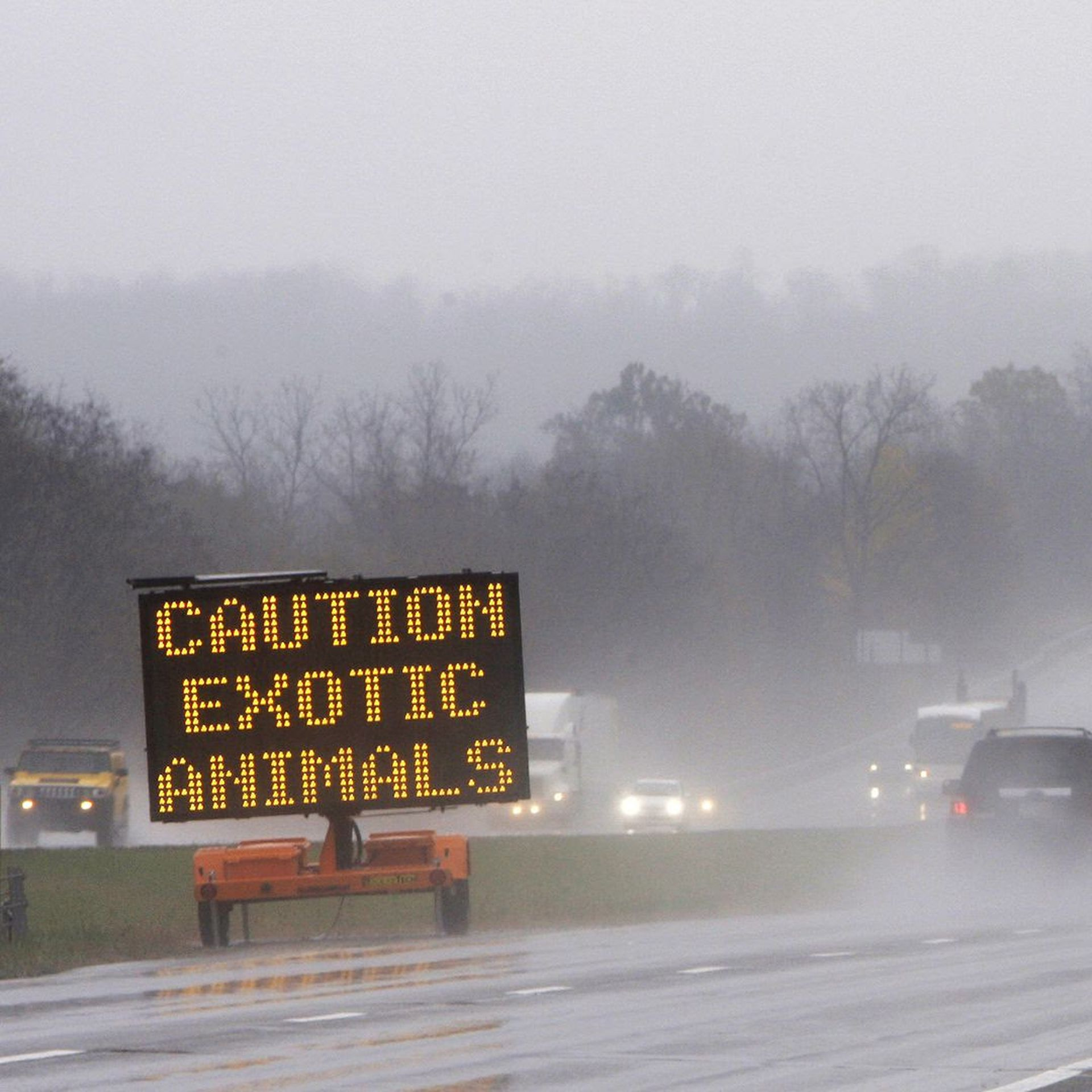 A sign warns passing motorists about exotic animals on the loose from a wildlife preserve in Zanesville.