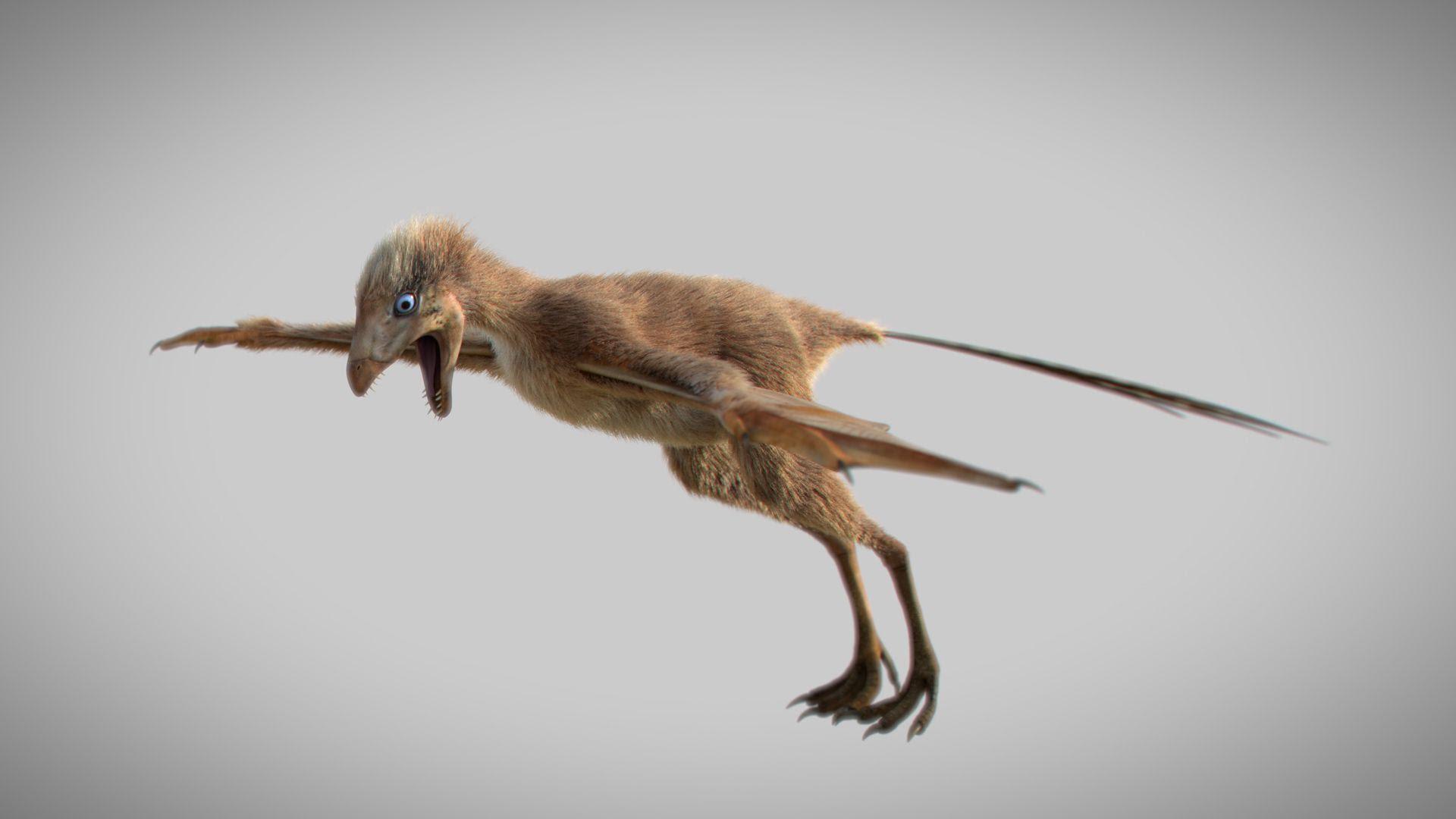 A tiny-bat like dino