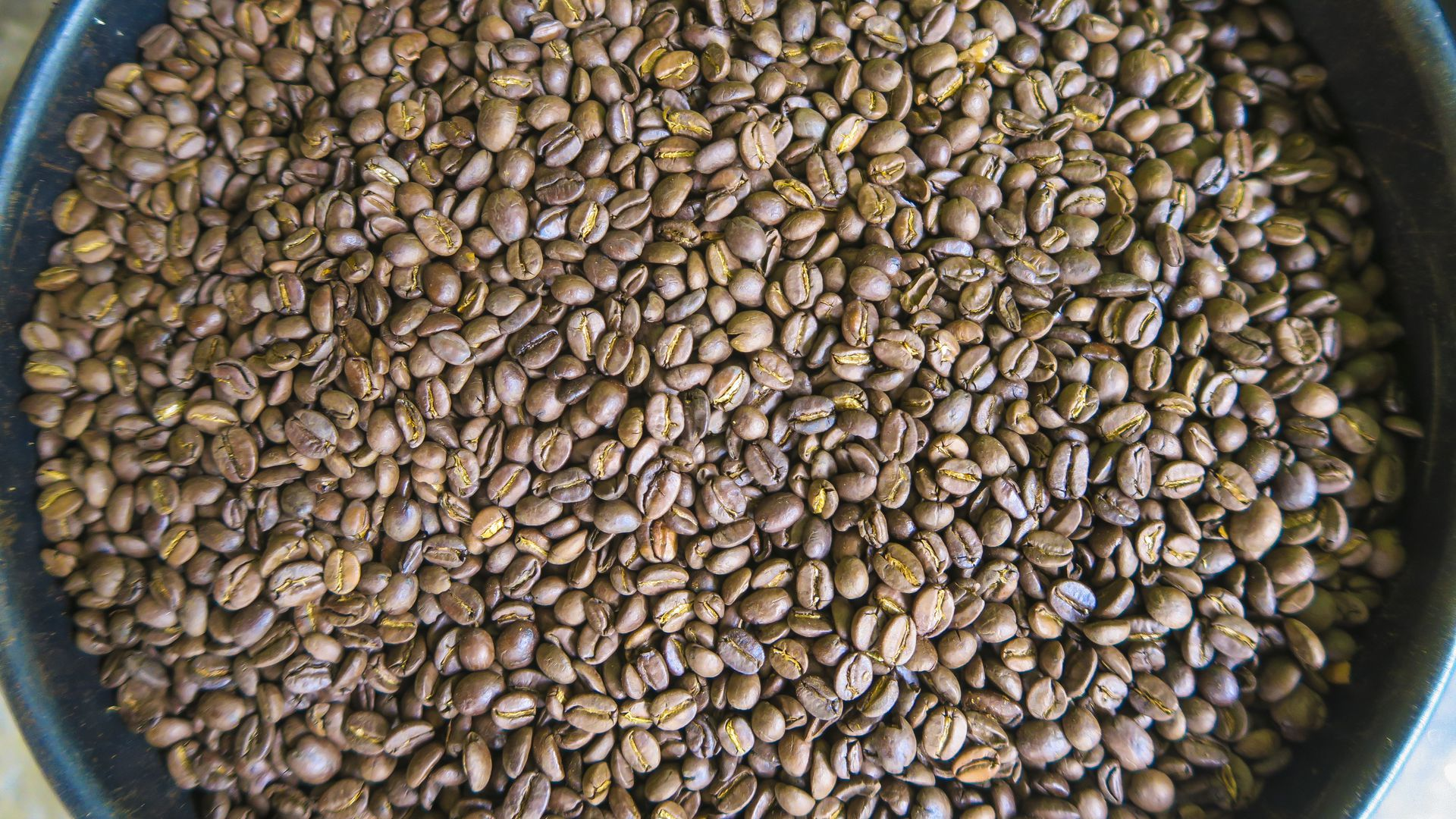 Local roasted coffee beans, Arabica, at the coffee farm La Victoria on August 19, 2016 in Minca, Colombia. The coffee is made for export. (Photo by EyesWideOpen/Getty Images)